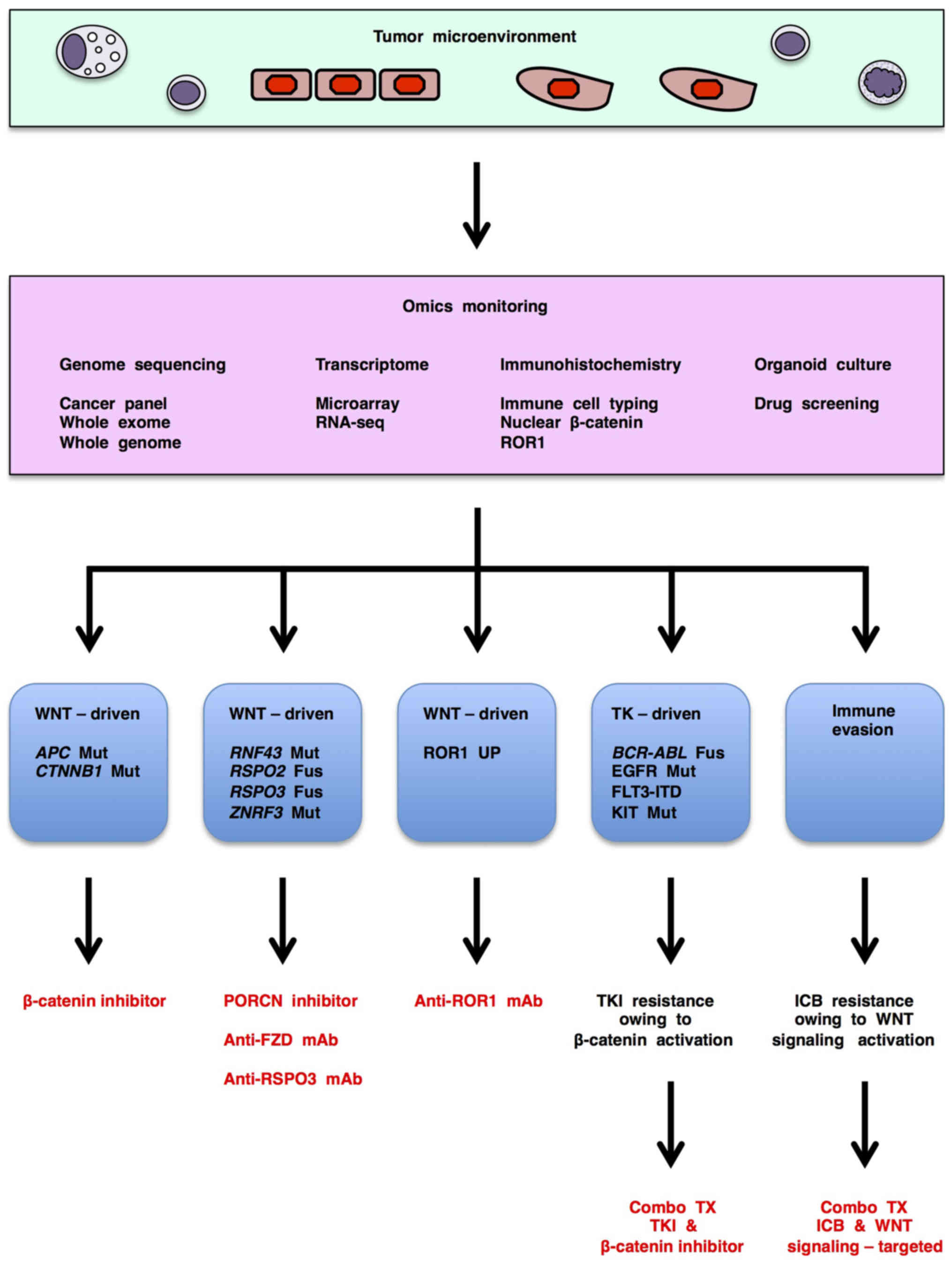 Acquired Resistance to Epidermal Growth Factor Receptor
