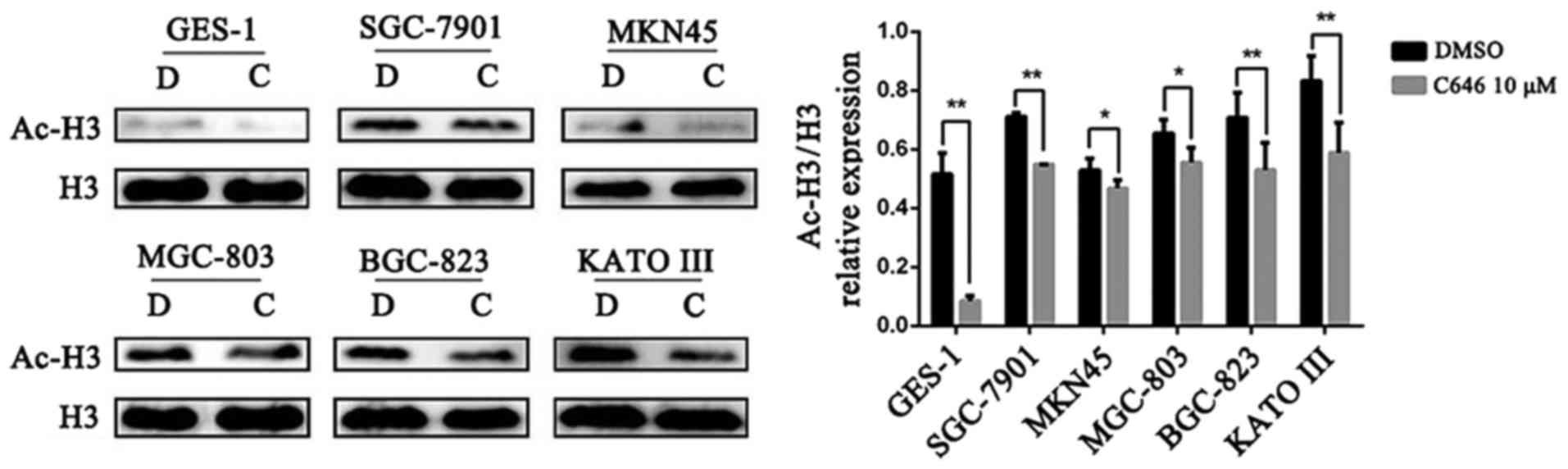 Histone acetyltransferase p300/CBP inhibitor C646 blocks the