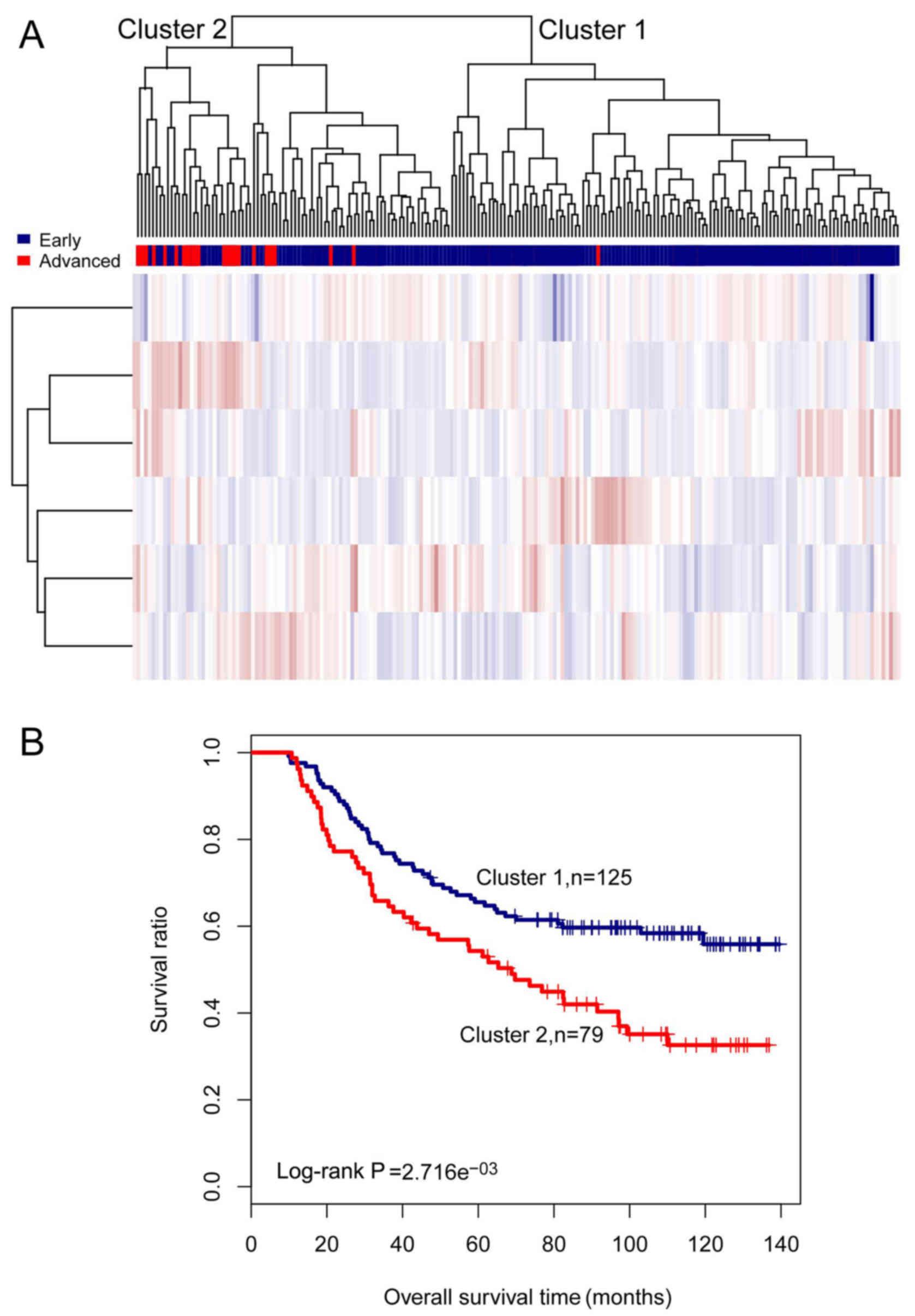 A six-long non-coding RNA signature predicts prognosis in