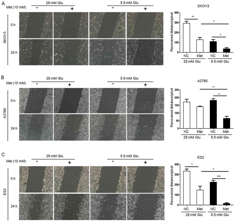 Metformin inhibits ovarian cancer via decreasing H3K27 trimethylation