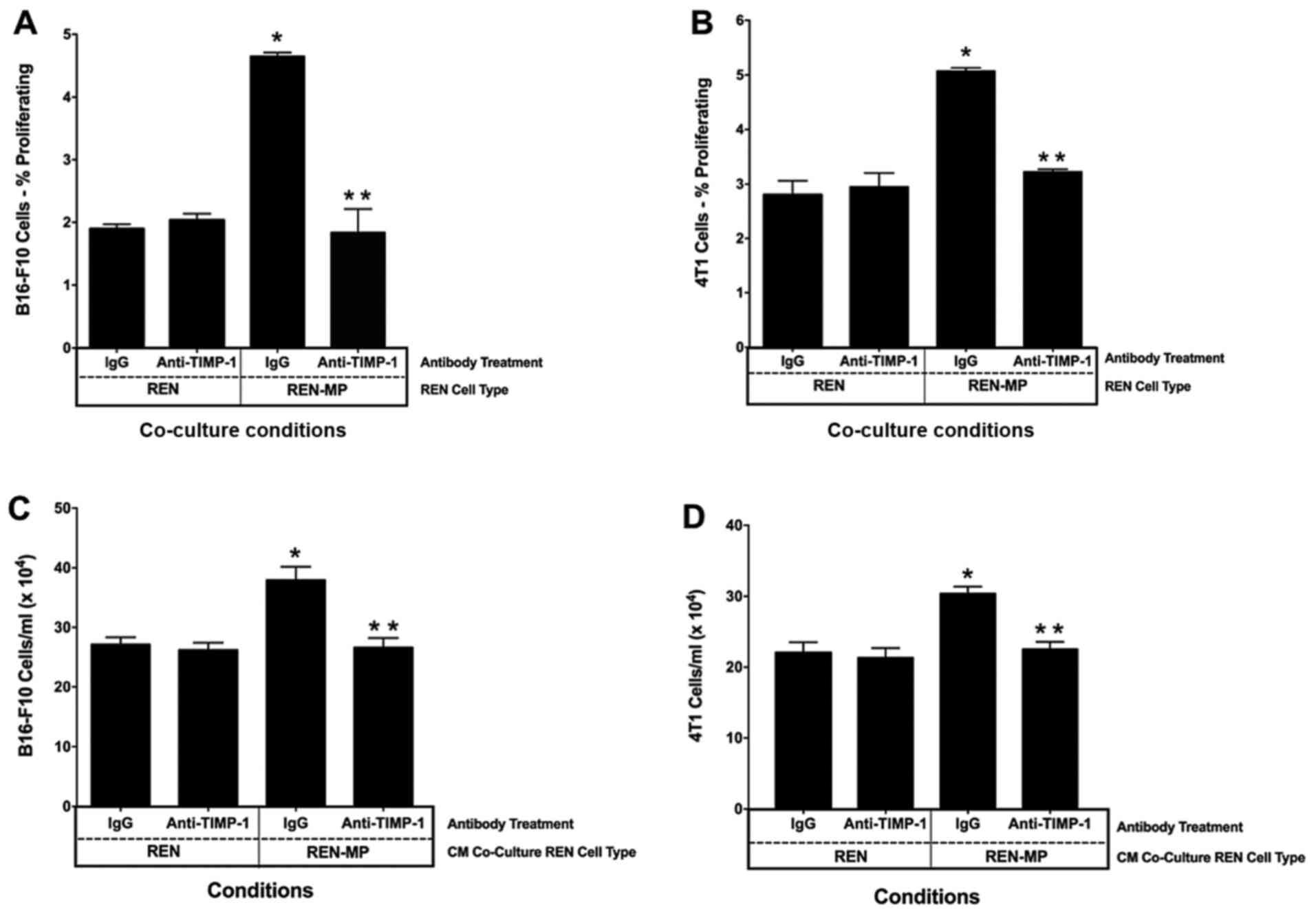 Involvement of TIMP-1 in PECAM-1-mediated tumor dissemination