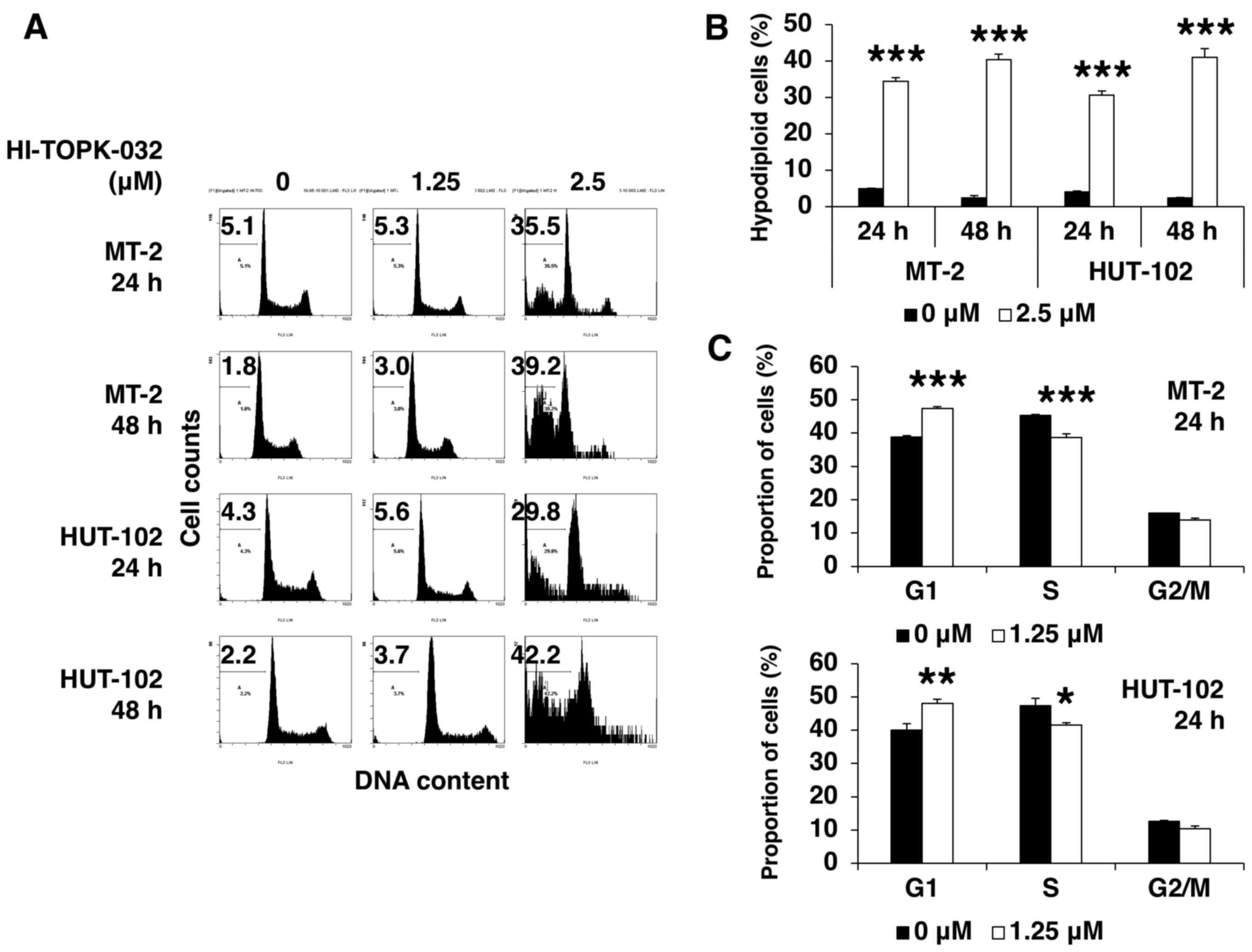 Mitotic kinase PBK/TOPK as a therapeutic target for adult T