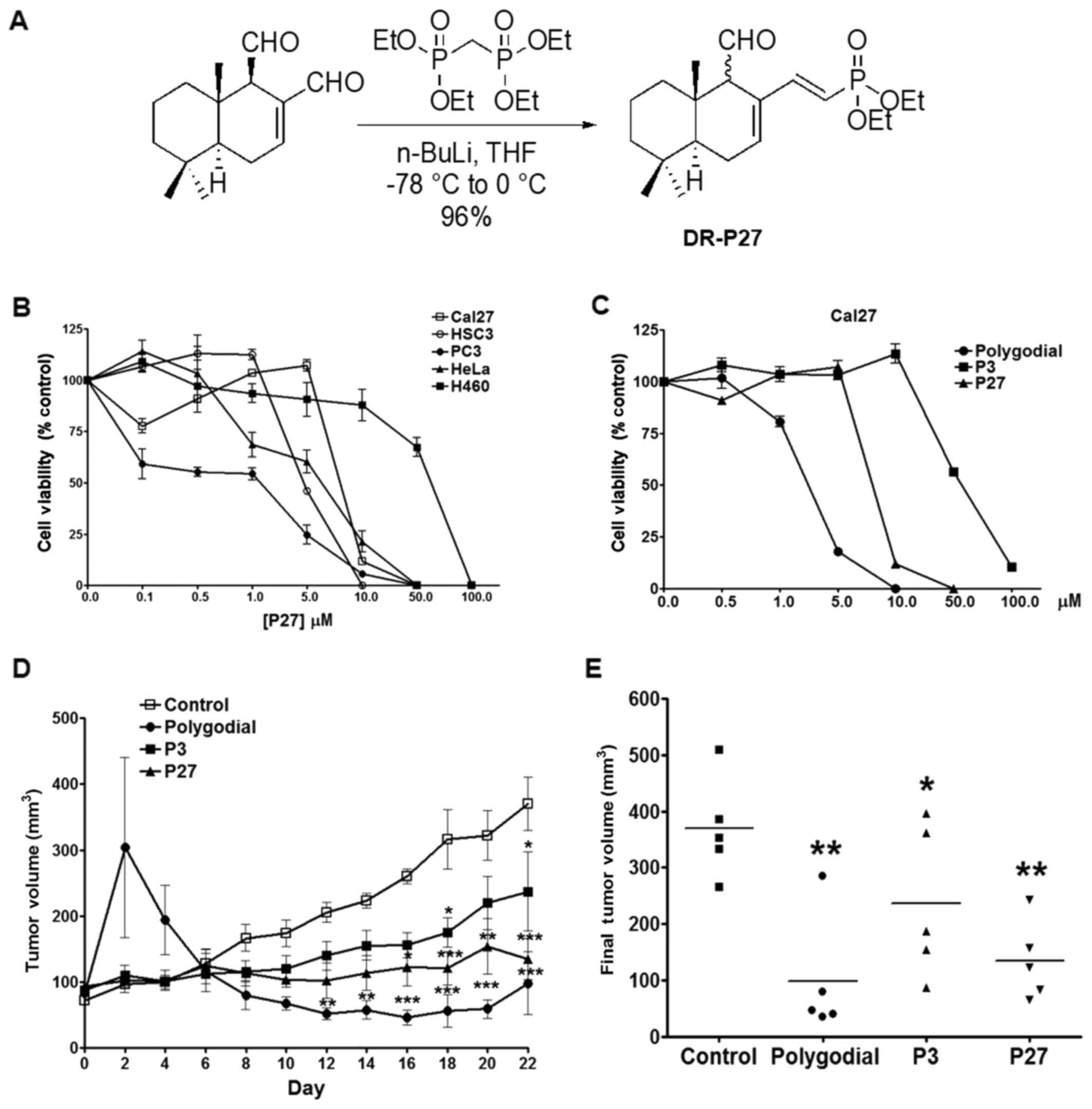 Novel Polygodial Analogs P3 And P27 Efficacious Therapeutic Agents Led Driver Circuit Diagram Likewise Besides A Schematic Of Synthesis B Mts Viability Assay In Cancer Cell Lines Treated With For 48 H N4 Per Group C Assays