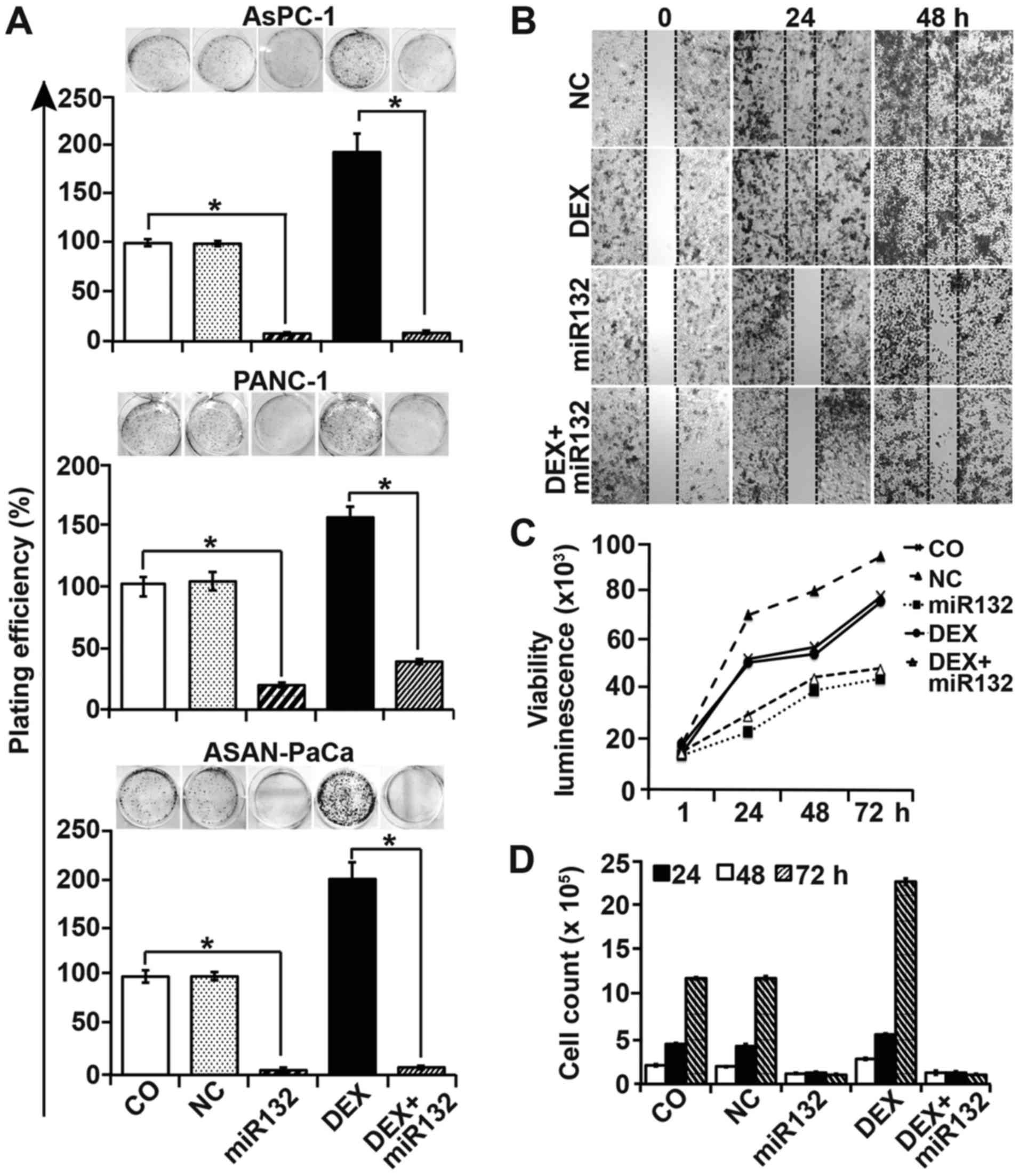Dexamethasone-induced inhibition of miR-132 via methylation