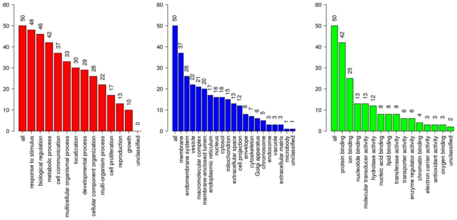Novel drug candidates for treating esophageal carcinoma: A