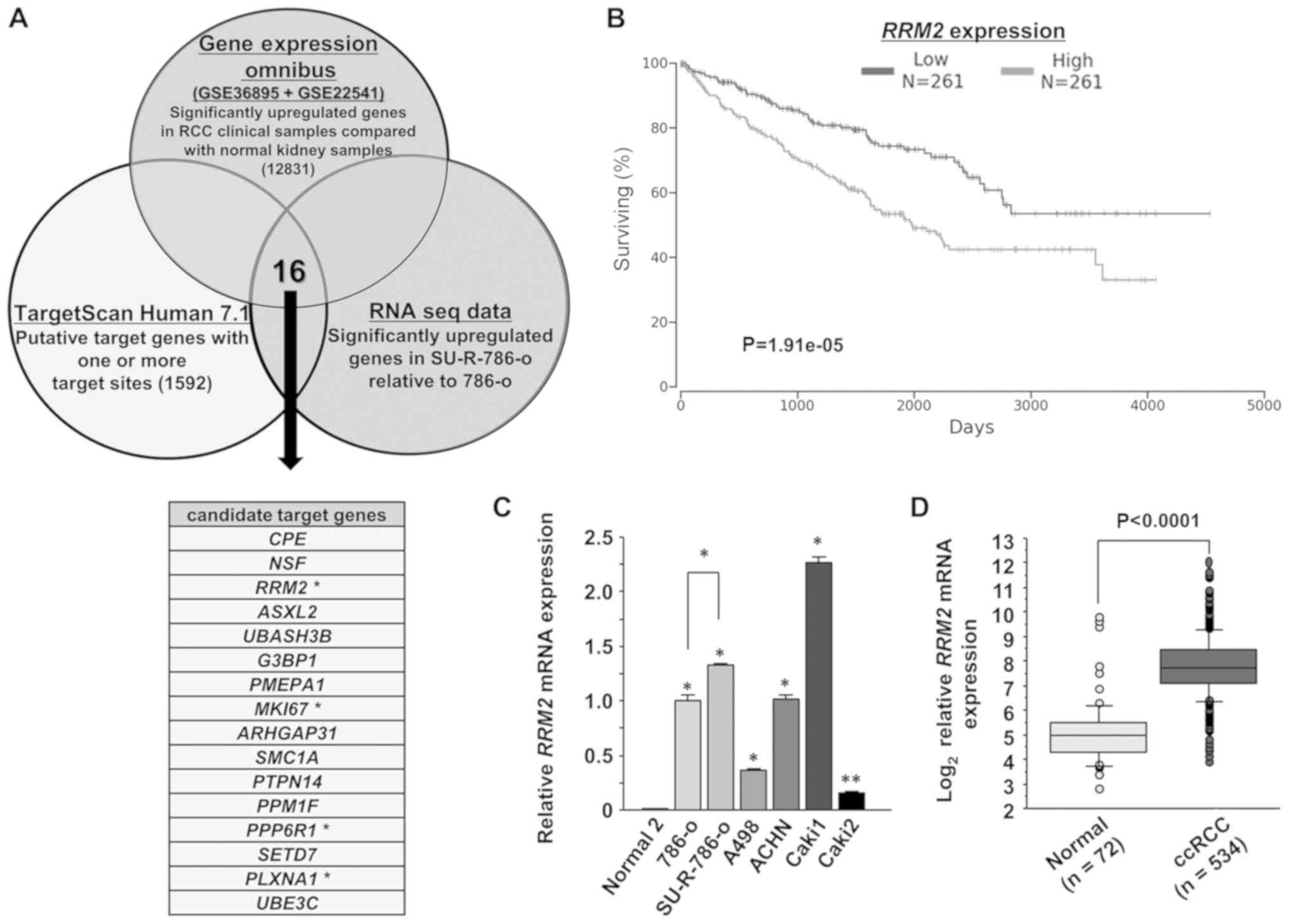 Potential tumor‑suppressive role of microRNA‑99a‑3p in