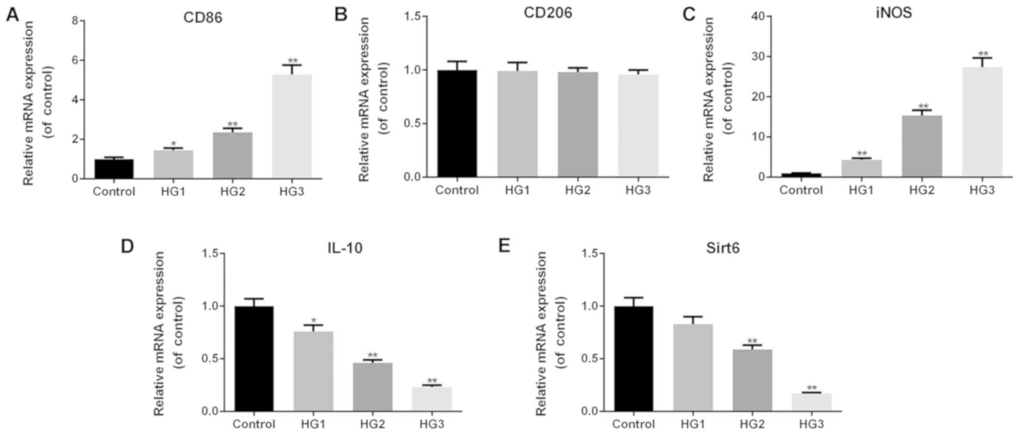 Overexpression Of Sirt6 Promotes M2 Macrophage Transformation