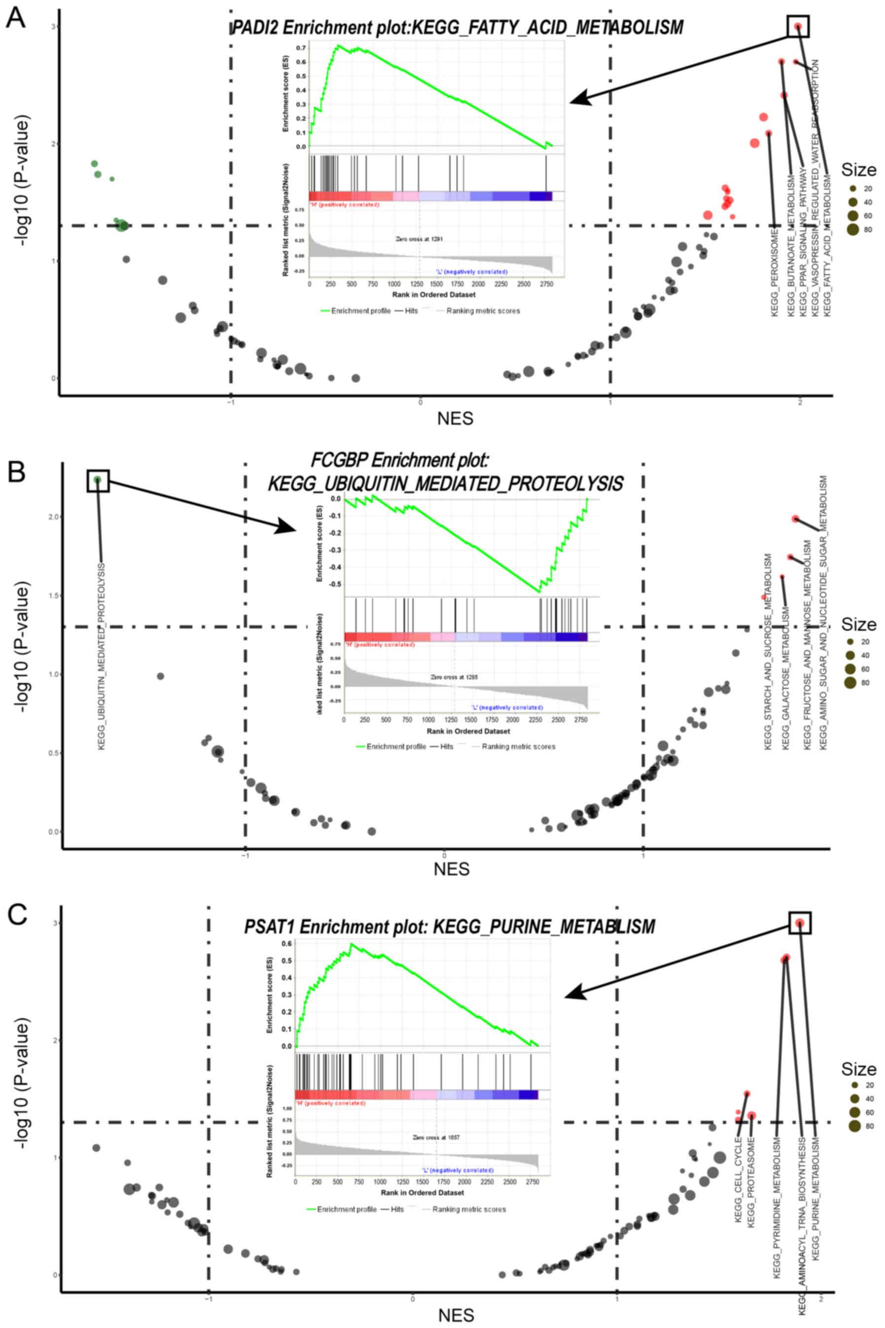 Integrating proteomics and transcriptomics for the