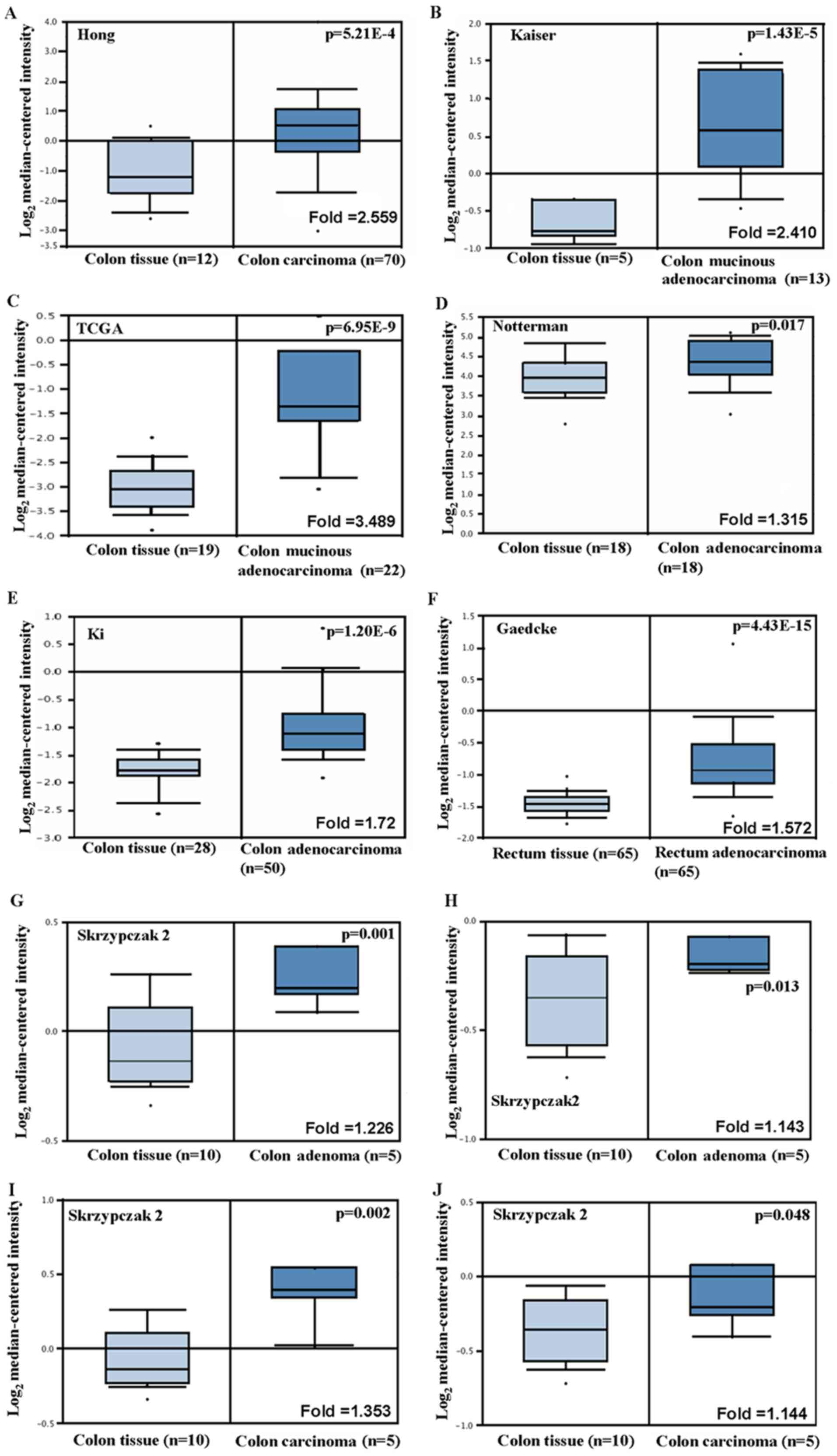 Roles Of Fascin Mrna Expression In Colorectal Cancer Meta Analysis And Bioinformatics Analysis
