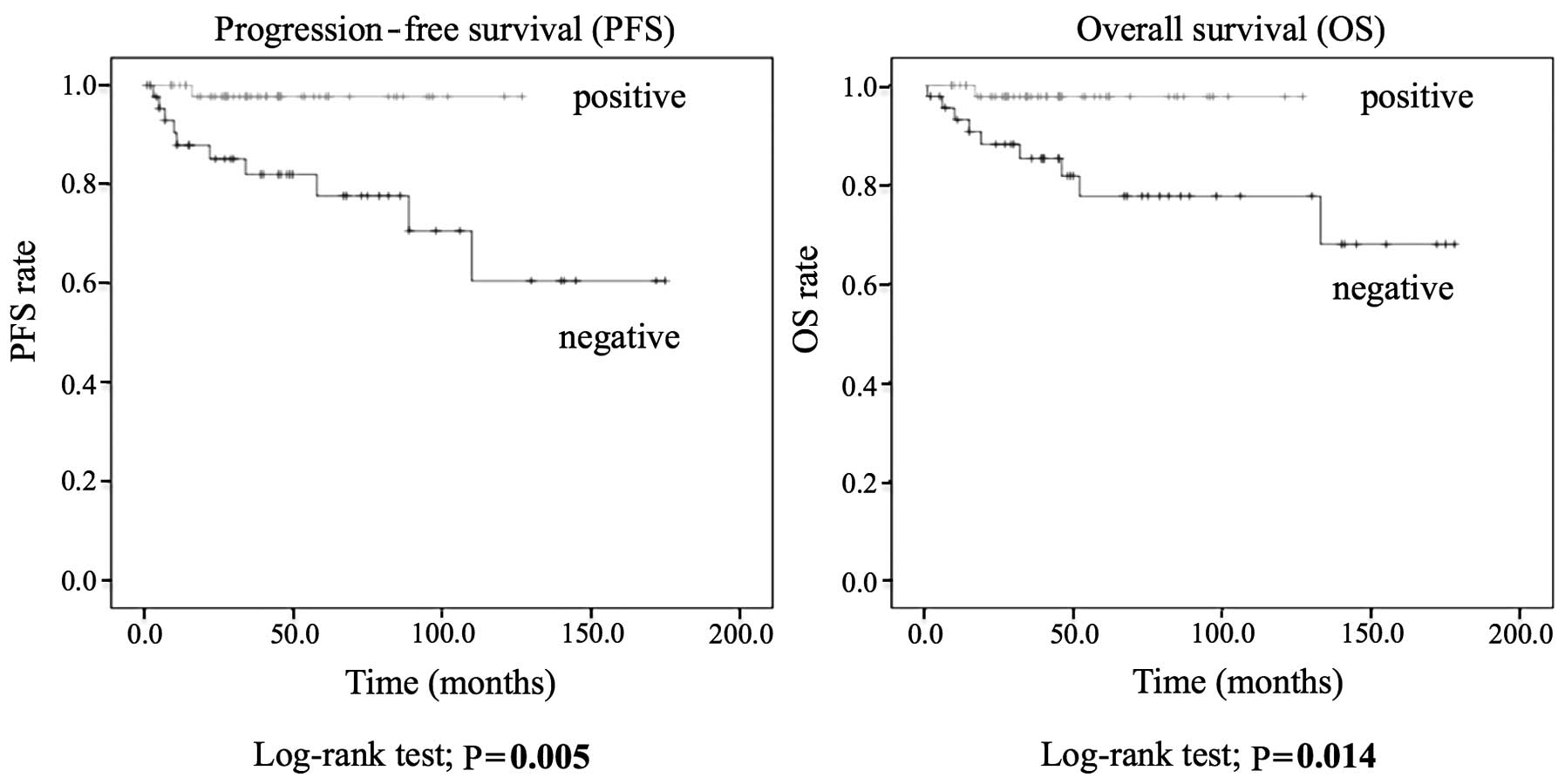 Clinical implications of human leukocyte antigen class i and overall survival curves showing the association between human leukocyte antigen class i expression patterns and prognosis in endometrial cancer buycottarizona
