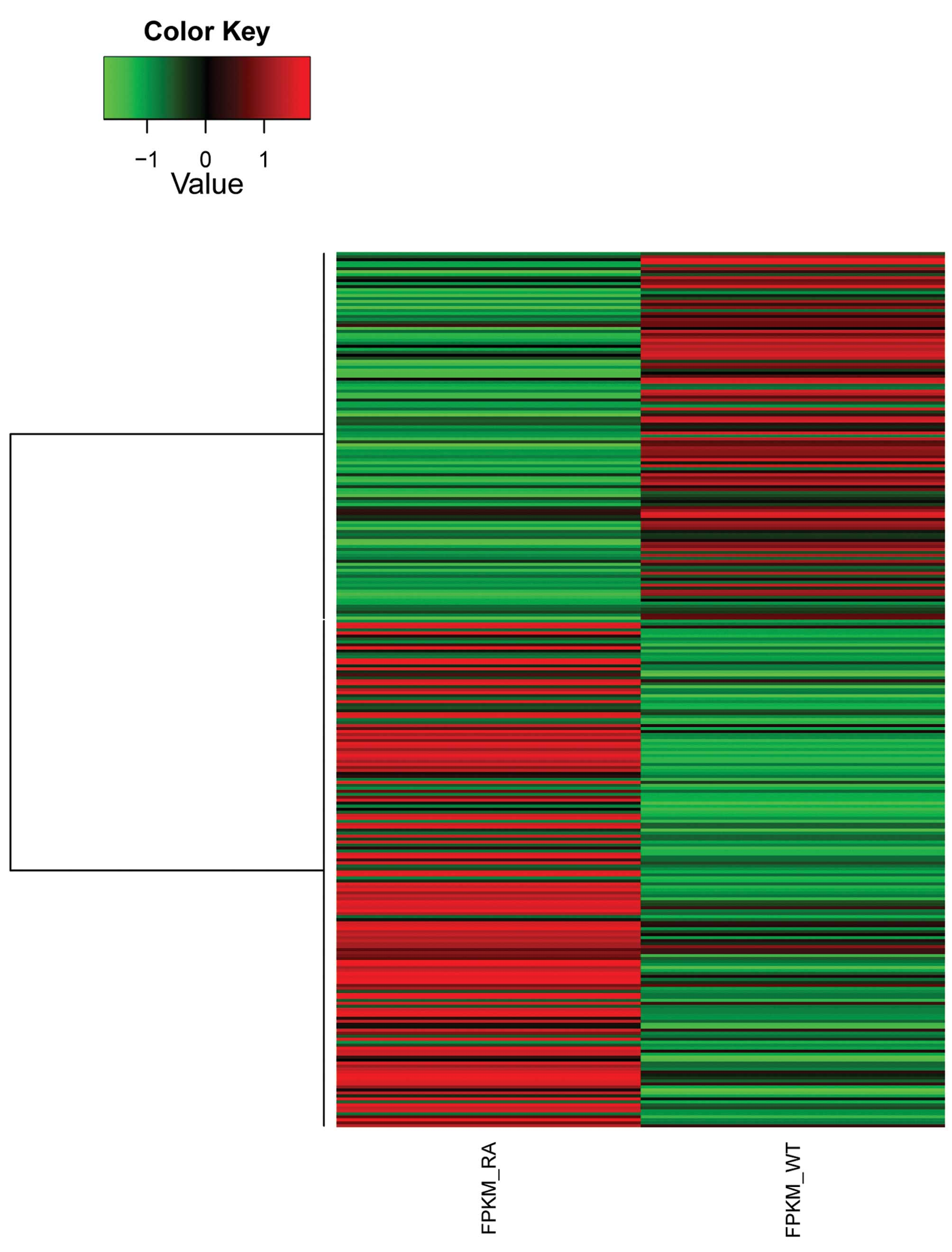 RNA‑seq analysis of synovial fibroblasts in human rheumatoid