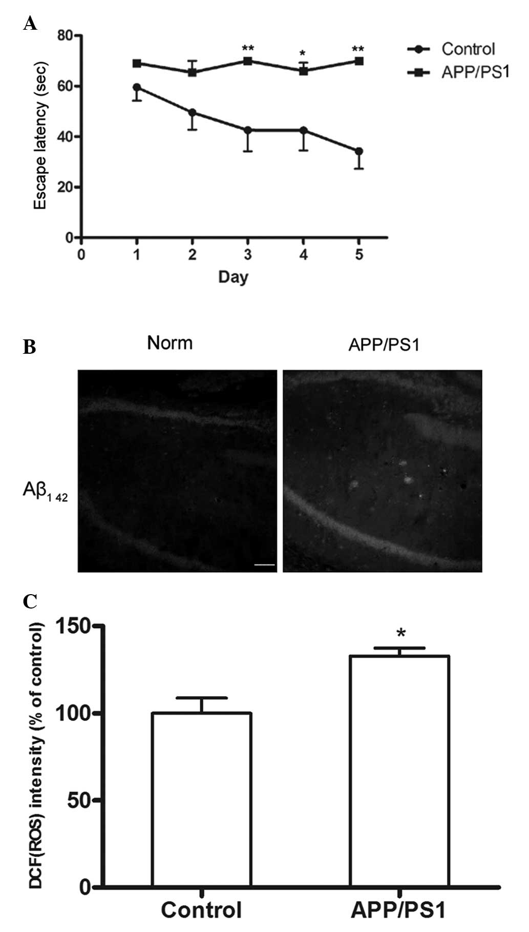 Early induction of oxidative stress in a mouse model of Alzheimer's