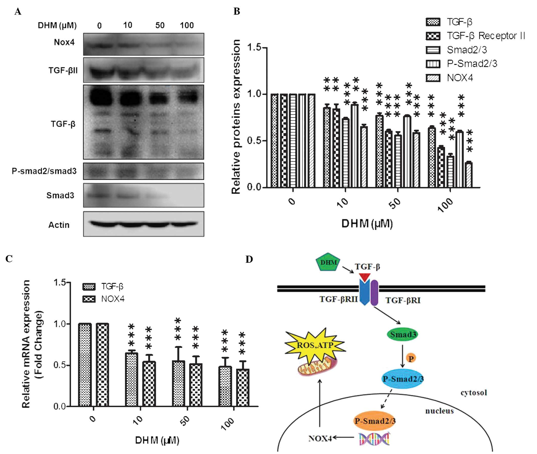 dihydromyricetin induces mouse hepatoma hepal u20116 cell