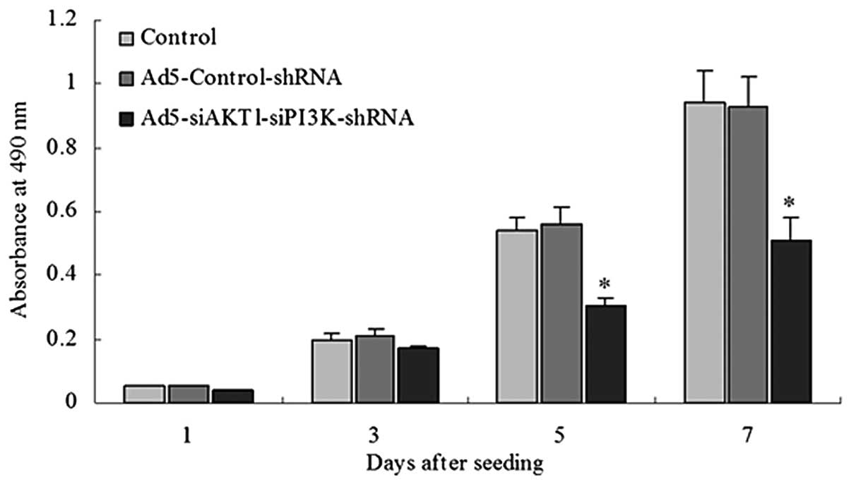 Short hairpin RNA targeting AKT1 and PI3K/p85 suppresses the