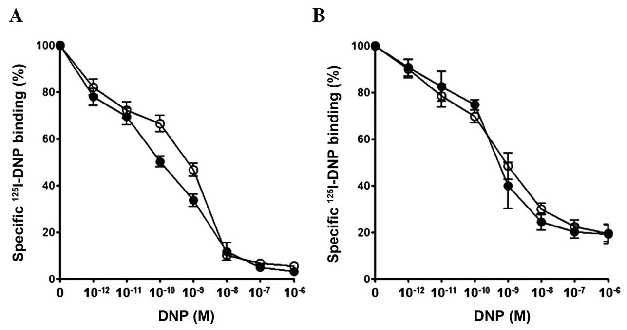 Characteristics of dendroaspis natriuretic peptide and its