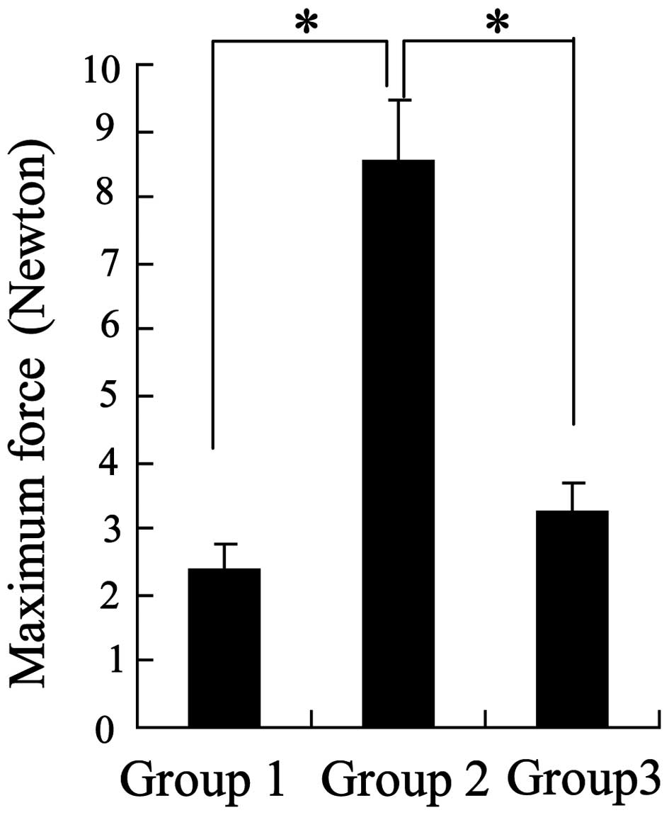 Chitosan prevents adhesion during rabbit flexor tendon