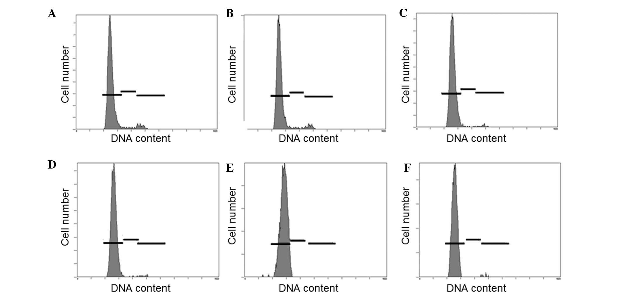 Cell Cycle Distribution Of Bone Marrow Mesenchymal Stem Cells Following Irradiation Was Yzed Using Flow Cytometric Ysis