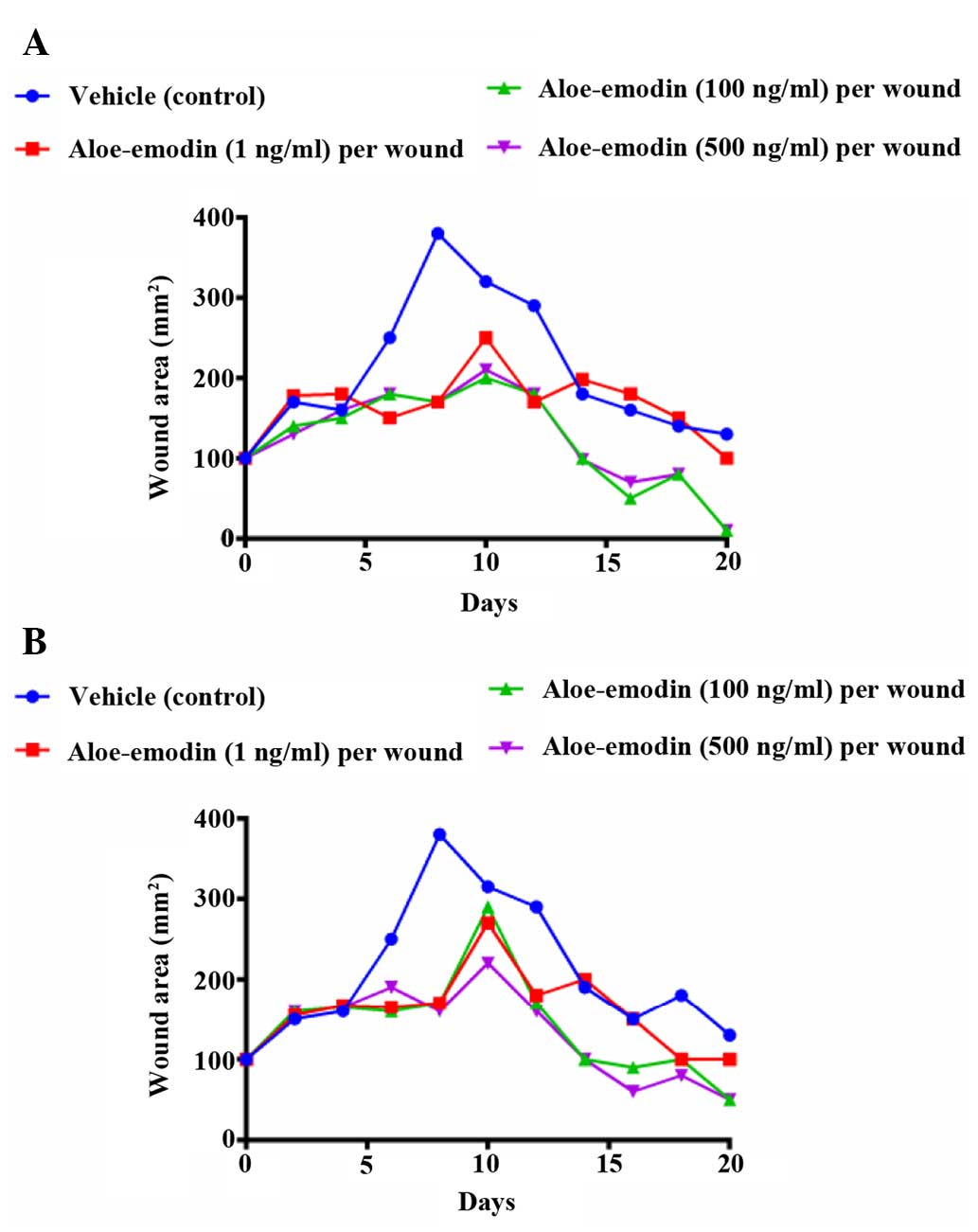 Aloe vera and Vitis vinifera improve wound healing in an in vivo rat