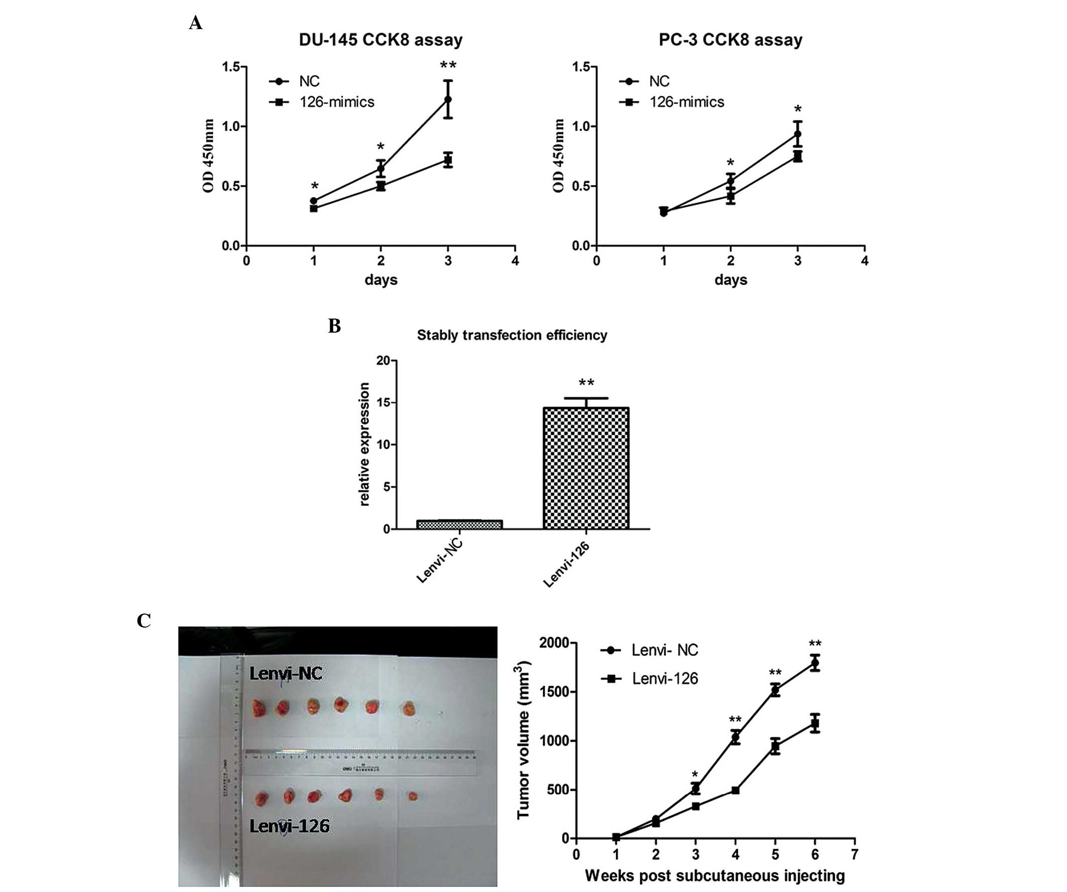 Microrna126 Inhibits Proliferation And Metastasis By Targeting Snap Circuits Pro 500in1 Sc500 S With Computer Inteface B The Expression Level Of Mir 126 In Stably Transfected Pc 3 Cells Was Confirmed Reverse Transcription Quantitative Polymerase Chain Reaction