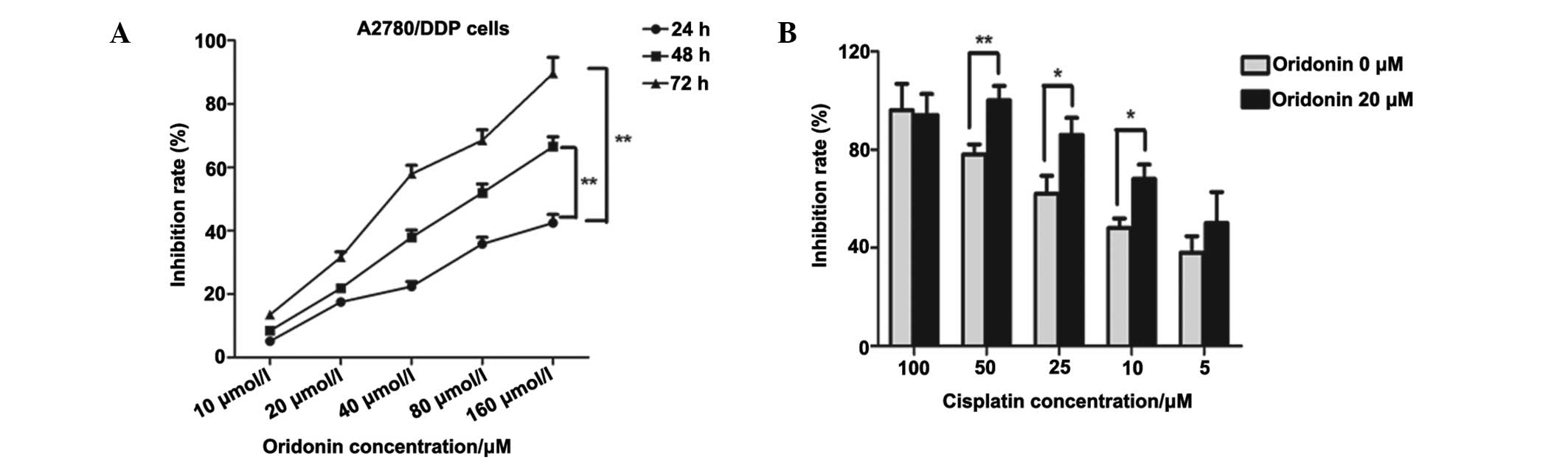 Oridonin Effectively Reverses Cisplatin Drug Resistance In Human Ovarian Cancer Cells Via Induction Of Cell Apoptosis And Inhibition Of Matrix Metalloproteinase Expression