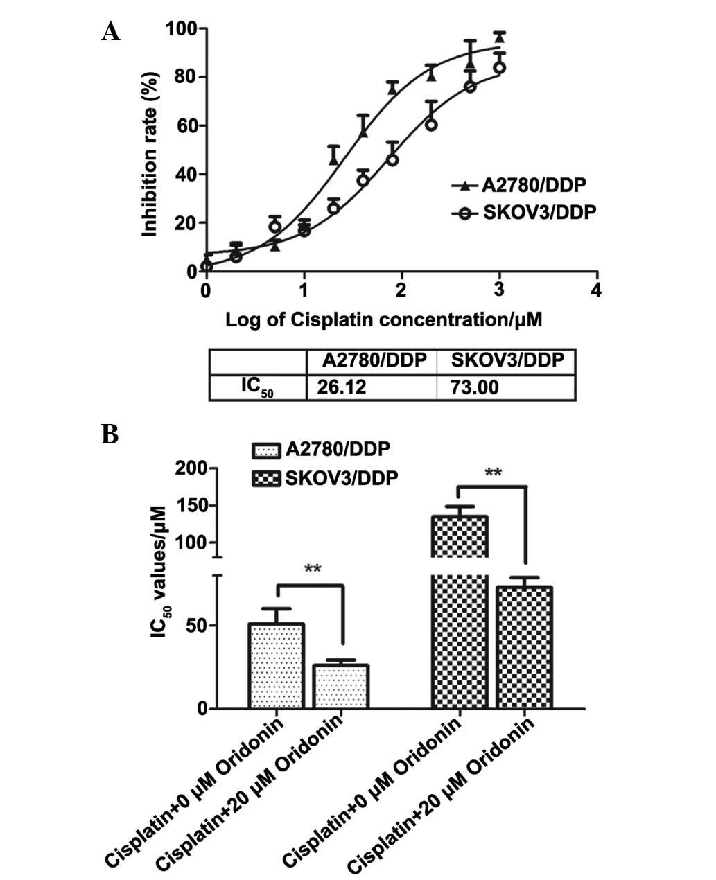 Oridonin effectively reverses cisplatin drug resistance in human