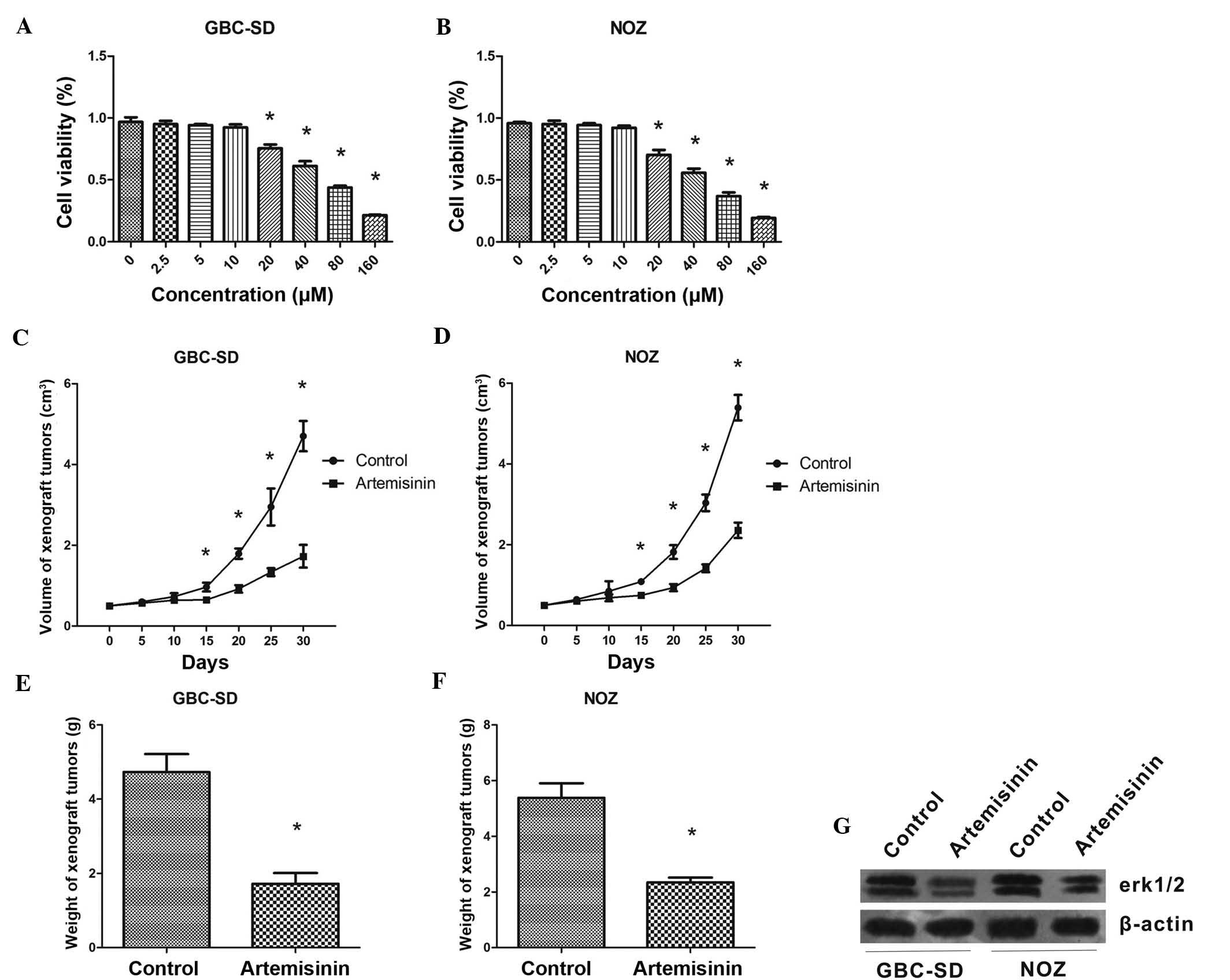 Artemisinin Inhibits Gallbladder Cancer Cell Lines Through Triggering Cell Cycle Arrest And Apoptosis