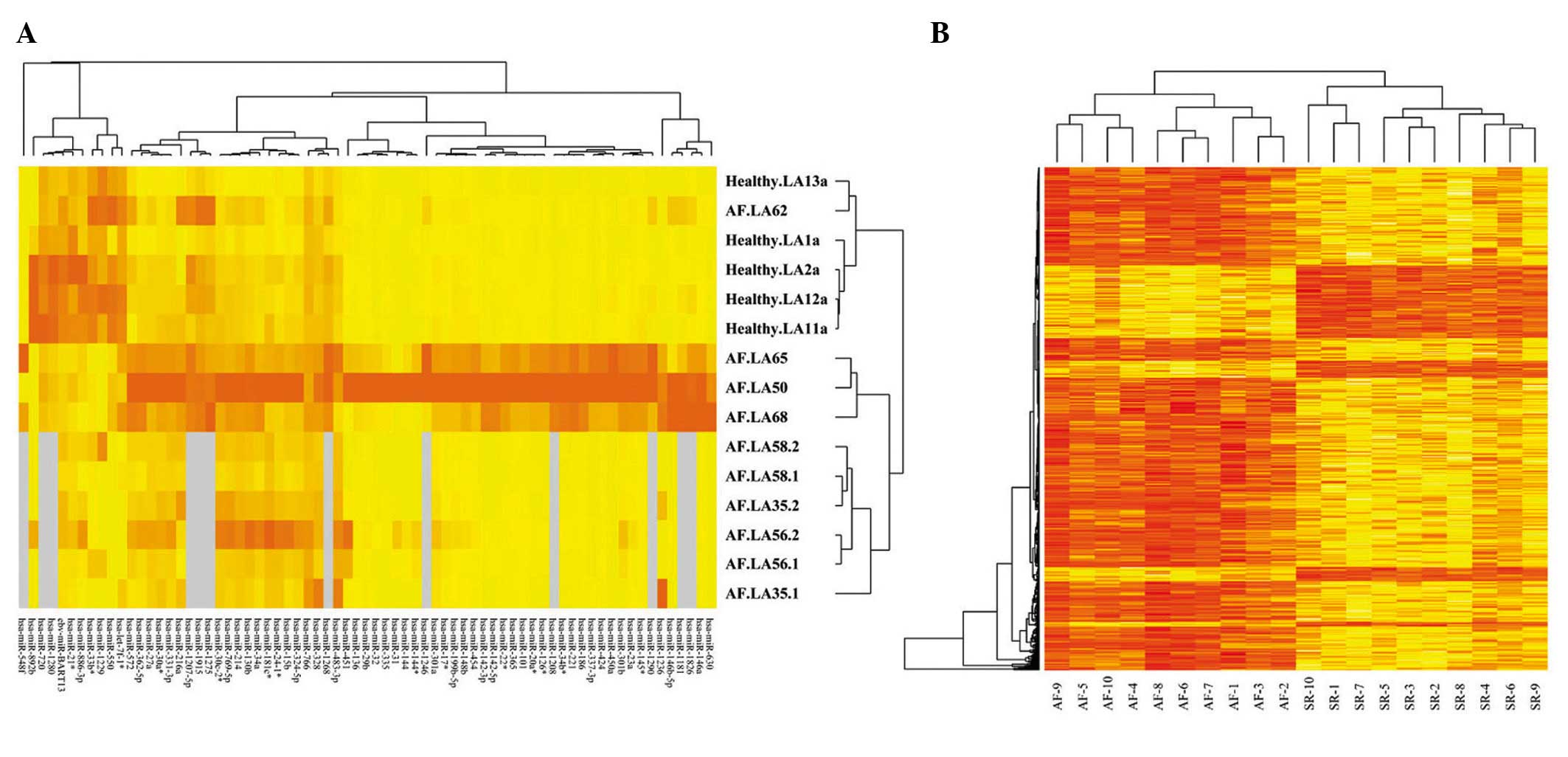 how to read a microarray heat map