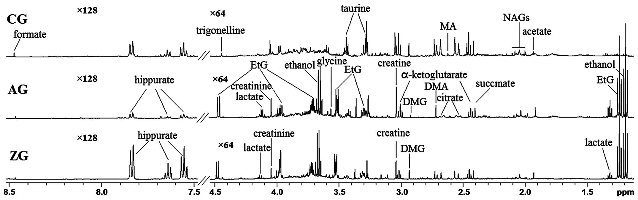 Dynamic metabolic profiling of urine biomarkers in rats with alcohol cg control group ag alcohol group zg zhi zi da huang decoction group etg ethyl glucuronide dmg dimethylglycine dma dimethylamine ma methylamine buycottarizona Choice Image