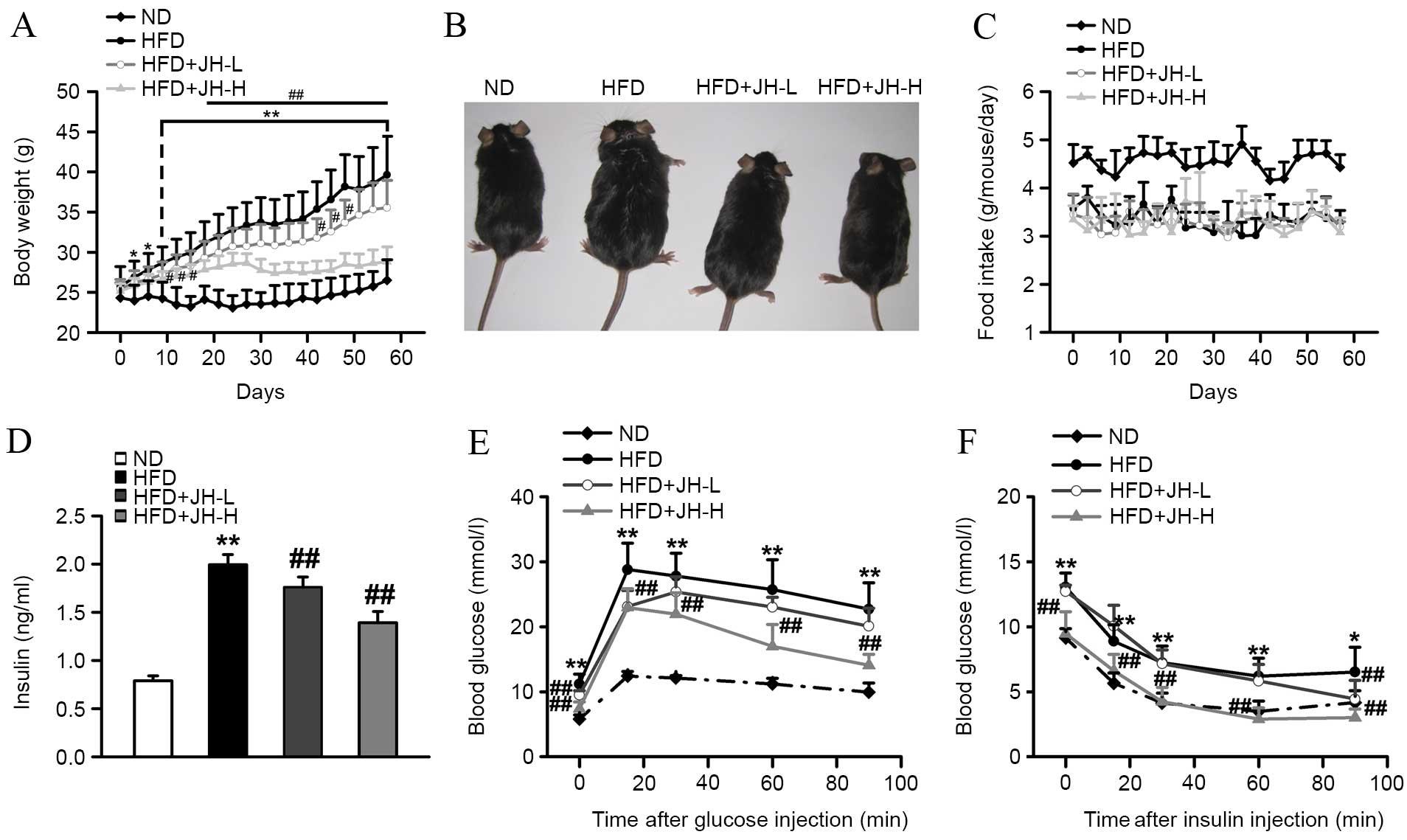 Garcinia cambogia reduces high-fat diet-induced hyperlipidemia