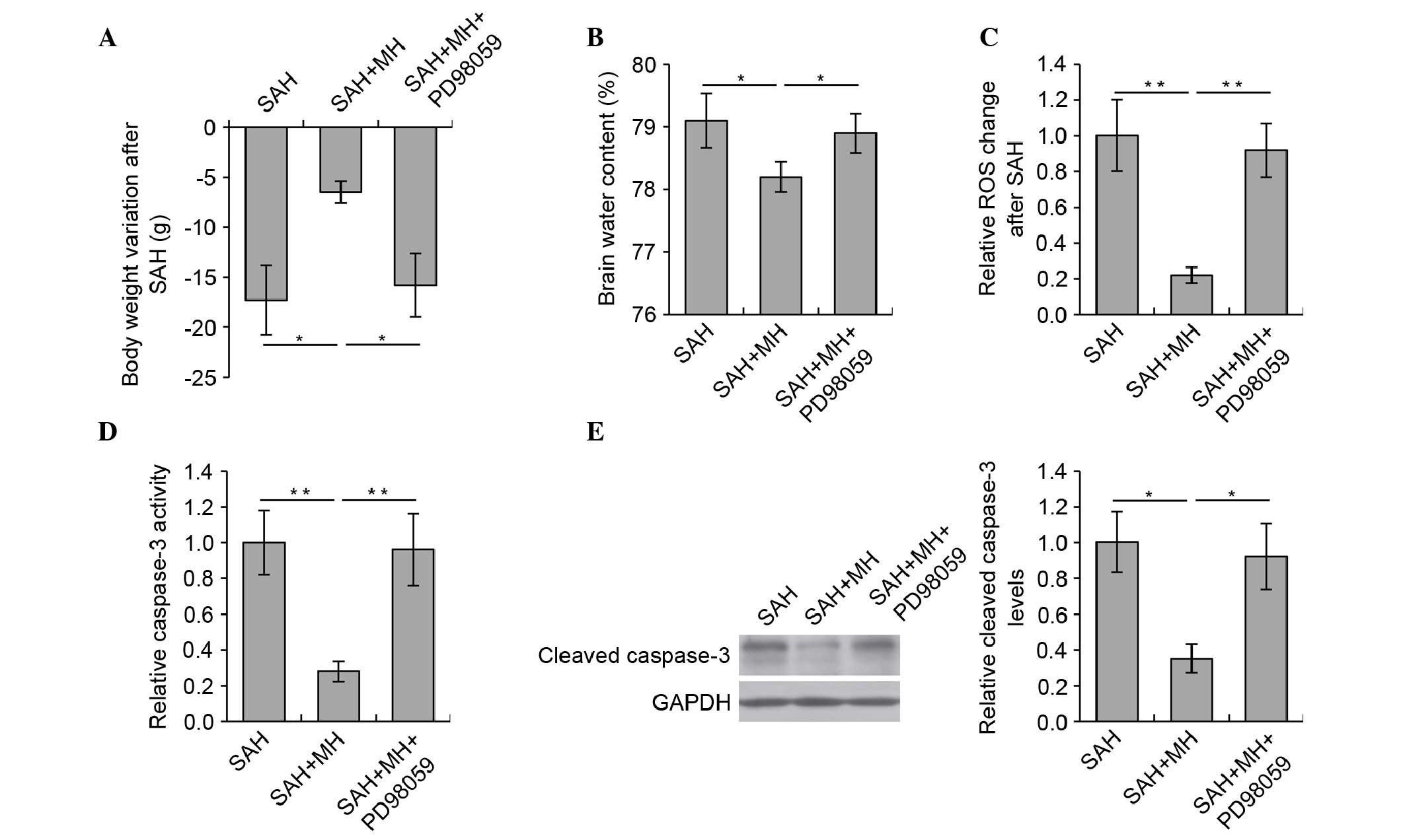 Mild hypothermia protects against early brain injury in rats