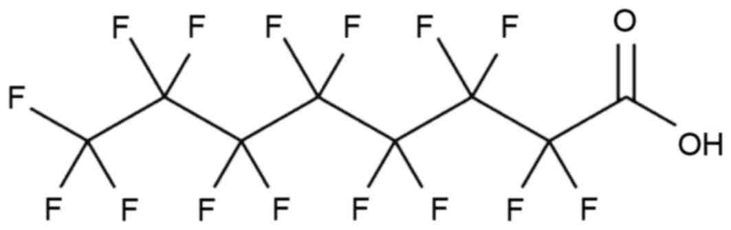 Perfluorooctanoic Acid Induces Oxidative Damage And