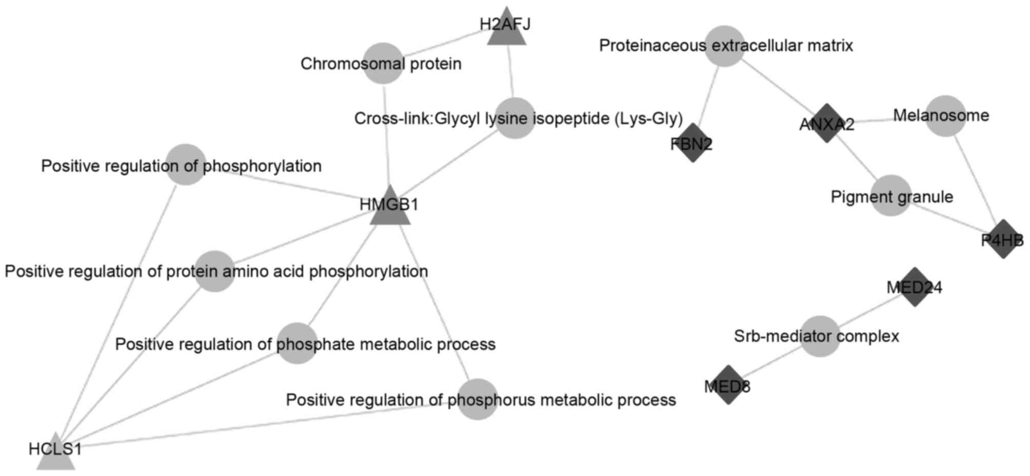Association between high mobility group box‑1 protein expression ...
