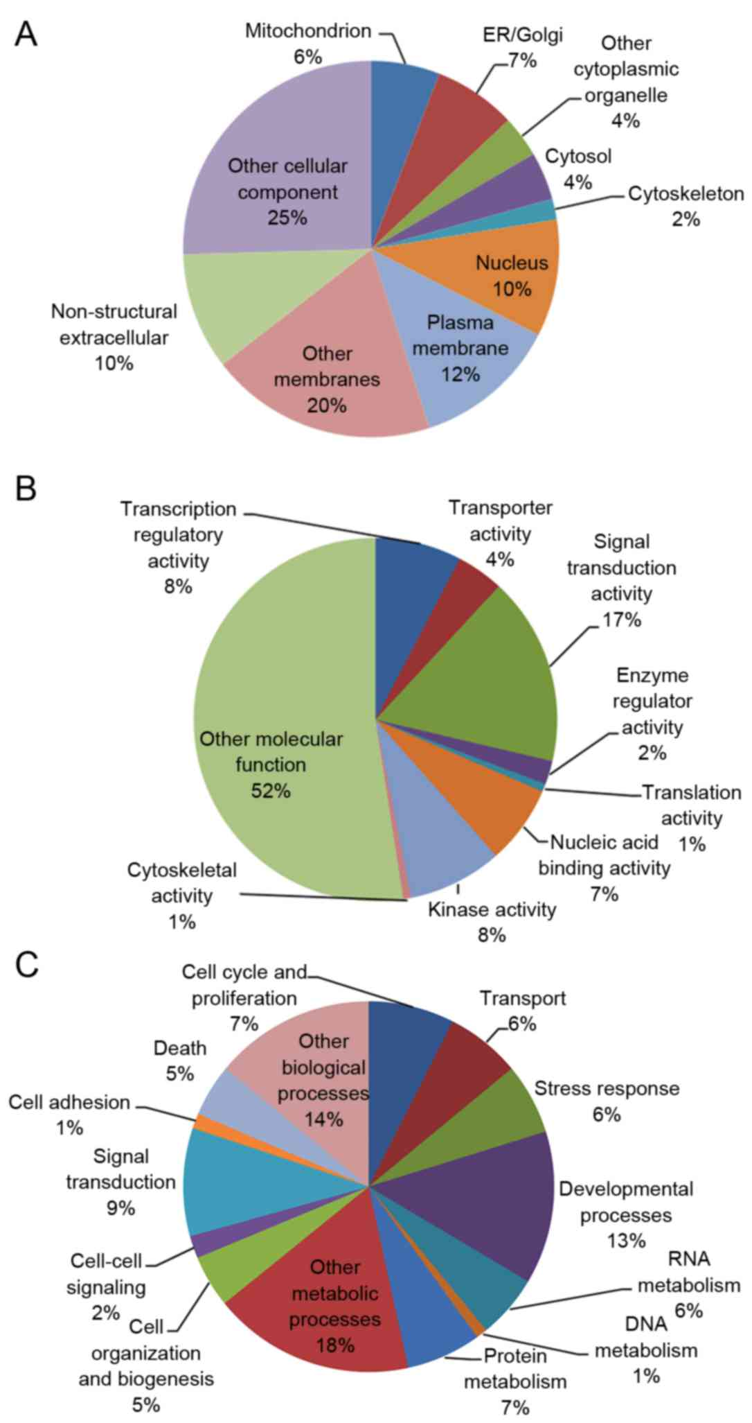 Data mining and pathway analysis of glucose 6 phosphate each pie chart represents the a cellular components b molecular functions and c biological processes of g6pd associated genes nvjuhfo Image collections
