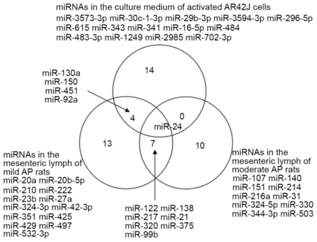 Screening and validation of differentially expressed extracellular venn diagram demonstrating the common mirnas differentially expressed in the three groups analyzed in the present study pooptronica Gallery