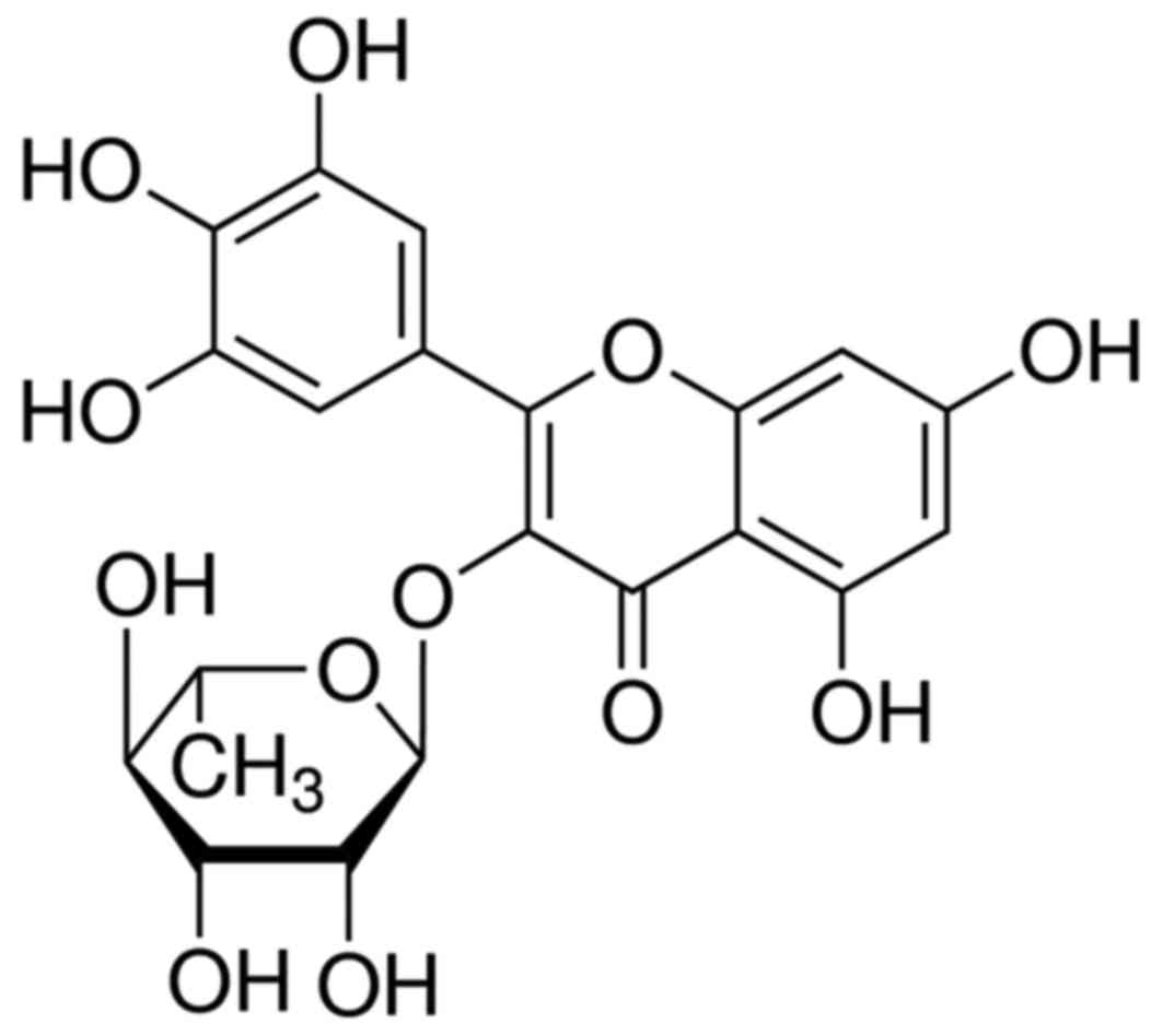 myricitrin decreases traumatic injury of the spinal cord and Spinal Cord Injury figure 1 the chemical structure of myricitrin