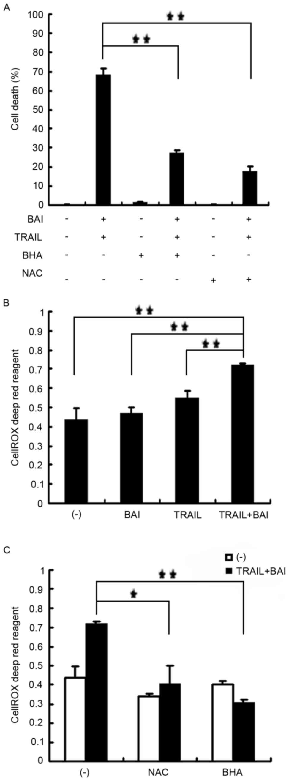 Baicalin potentiates TRAIL‑induced apoptosis through p38 MAPK ...