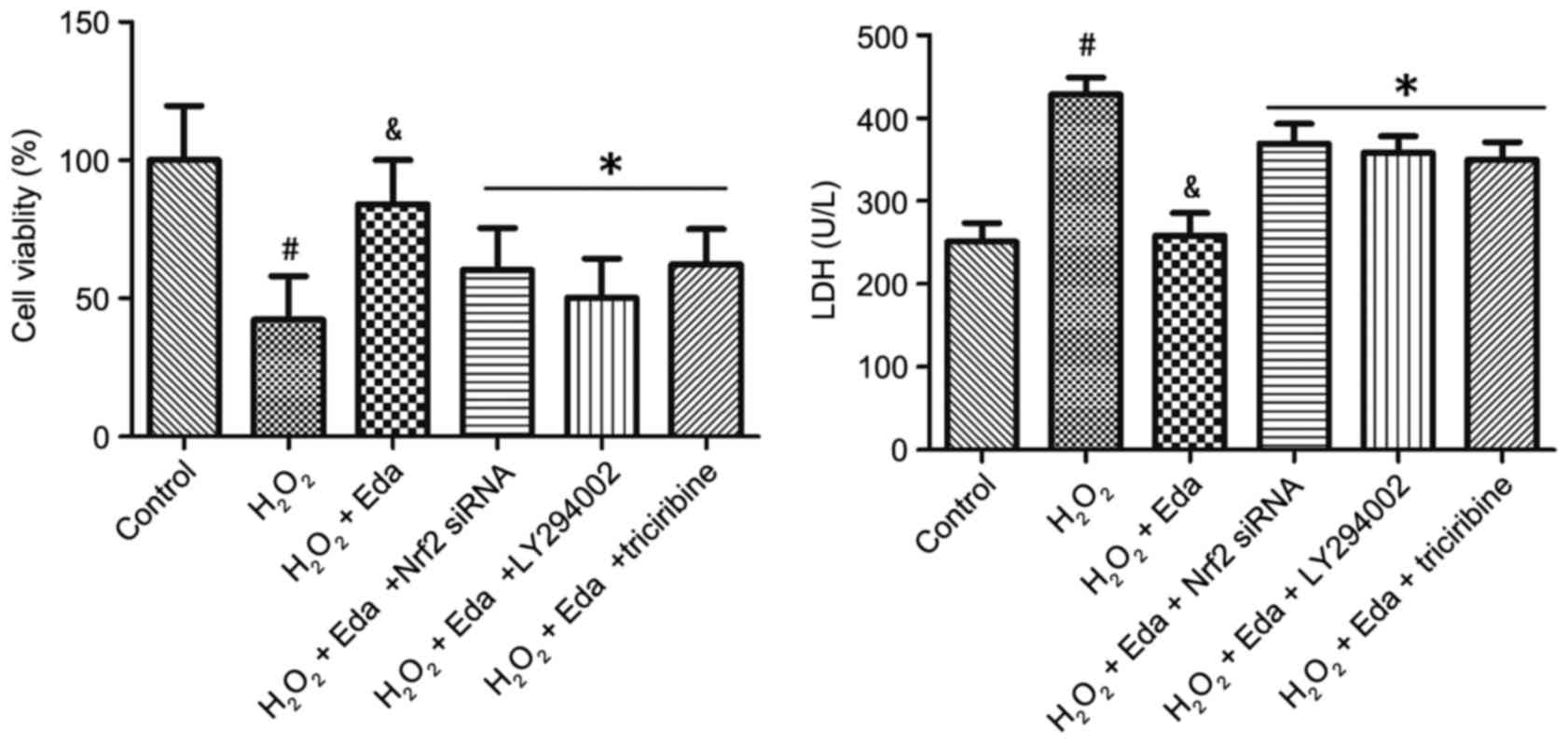 Edaravone protects the retina against ischemia/reperfusion