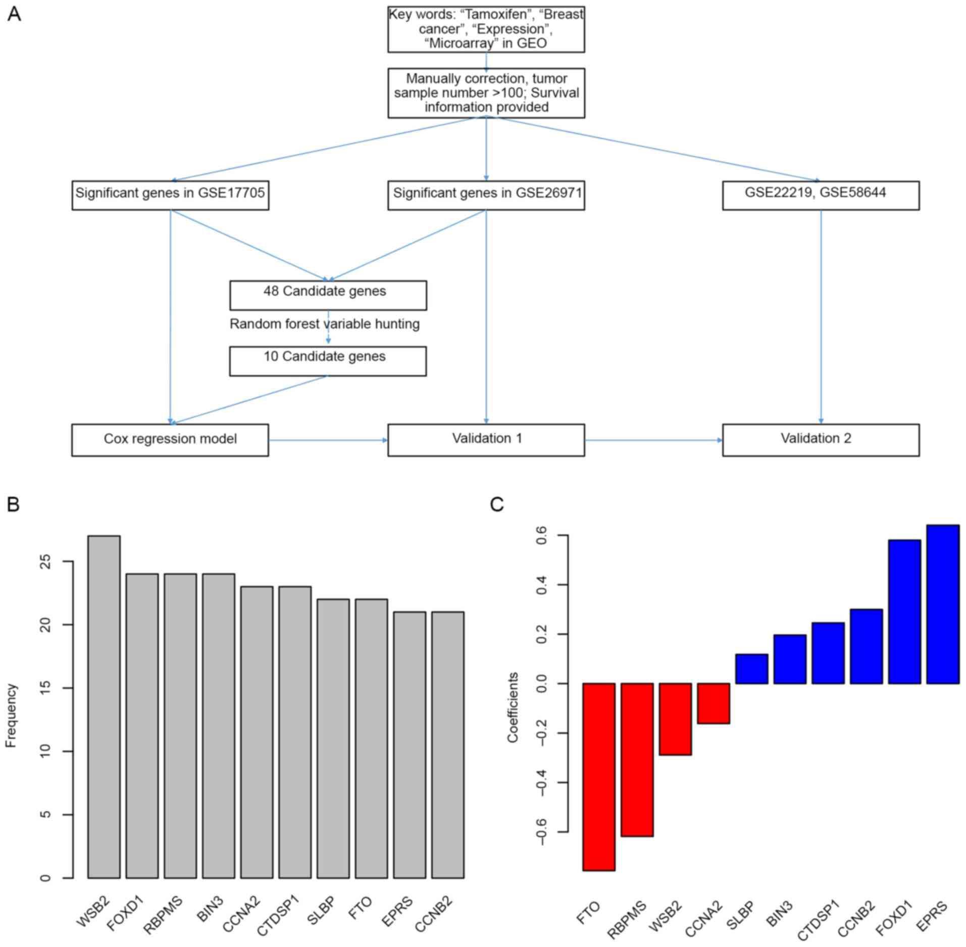 Transcriptomic Signature Predicts The Distant Relapse In