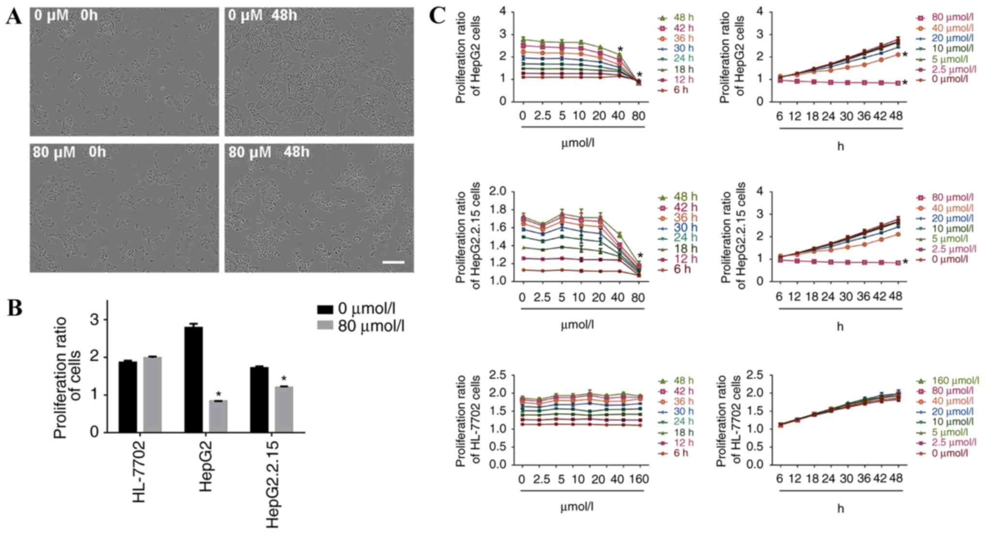 Propranolol Suppresses The Proliferation And Induces Apoptosis Figure1 Cell Phone Jammer Circuit Diagram Figure 1 Hydrochloride Treatment Inhibits Of Hepg2 Hepg2215 Cells A Following 48 H Incubation With 80 Mol L