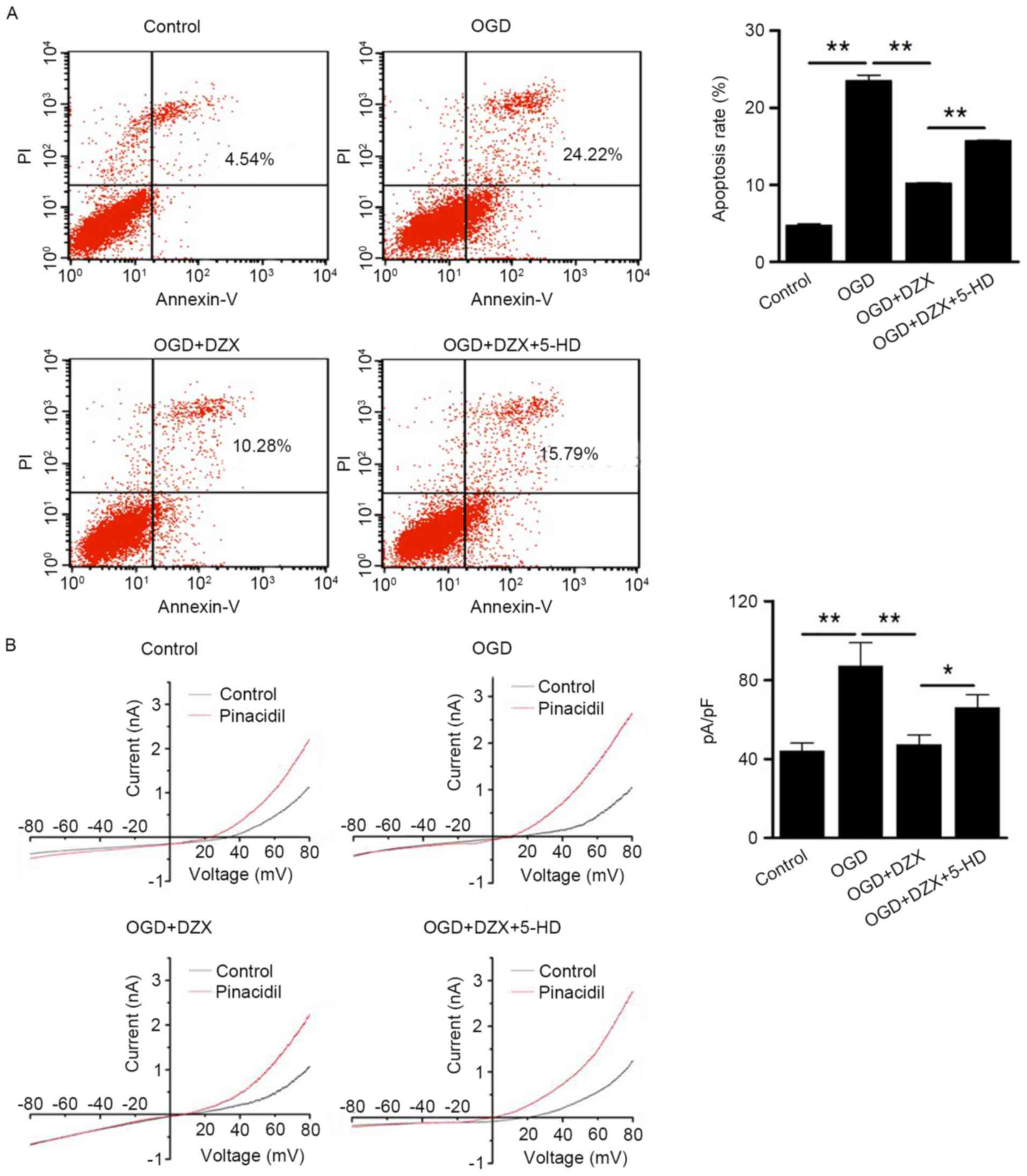 Diazoxide Inhibits Of Er Stressmediated Apoptosis During Oxygen Figure1 Cell Phone Jammer Circuit Diagram Figure 1 Anti Apoptotic Effects Dzx In Ogd Treated Hippocampal Cells A Pretreatment With Attenuates Following
