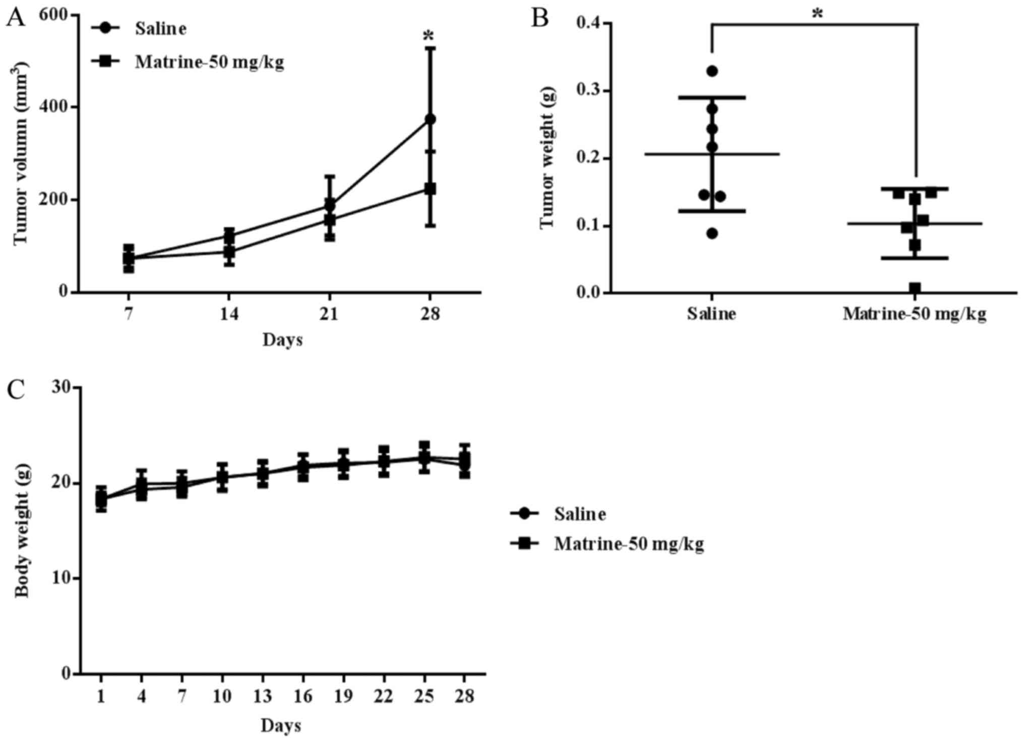 Matrine inhibits prostate cancer via activation of the unfolded