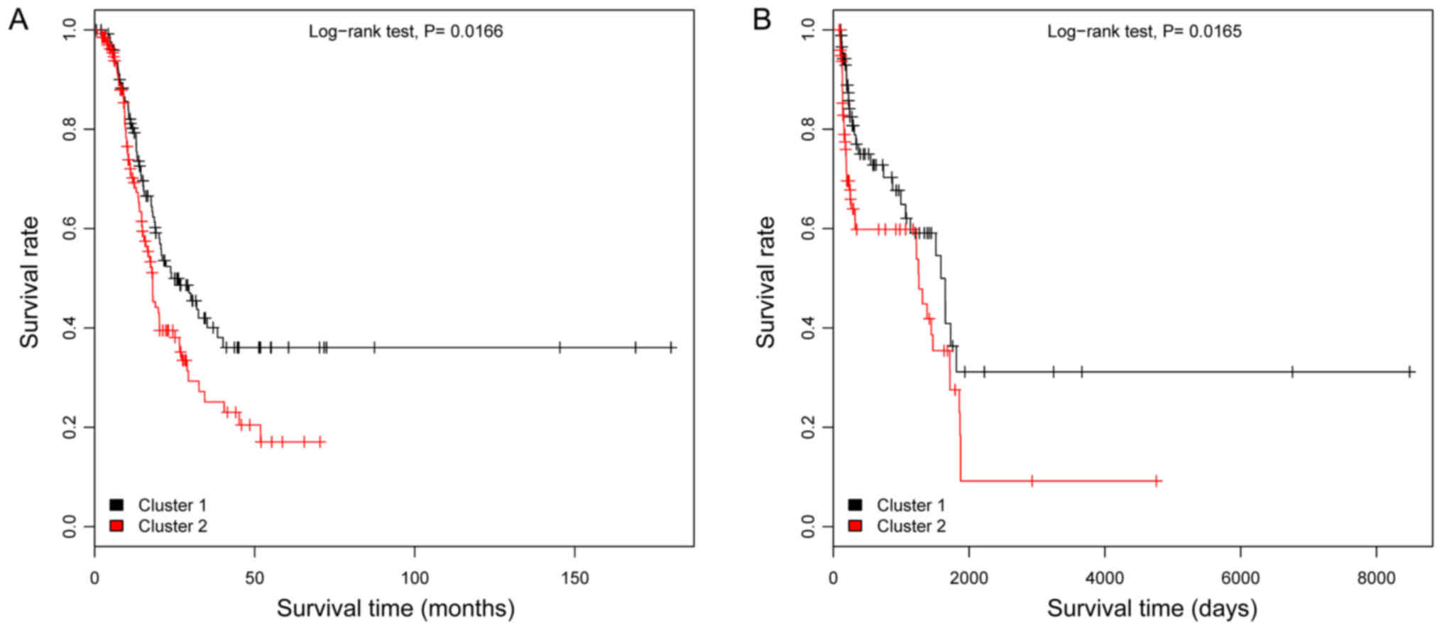 A random forest classifier predicts recurrence risk in patients with