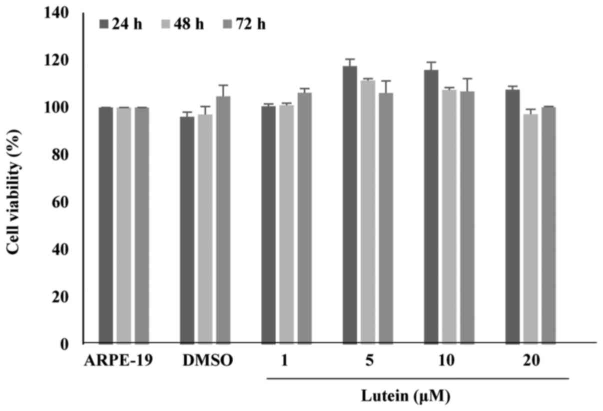 Lutein protects human retinal pigment epithelial cells from