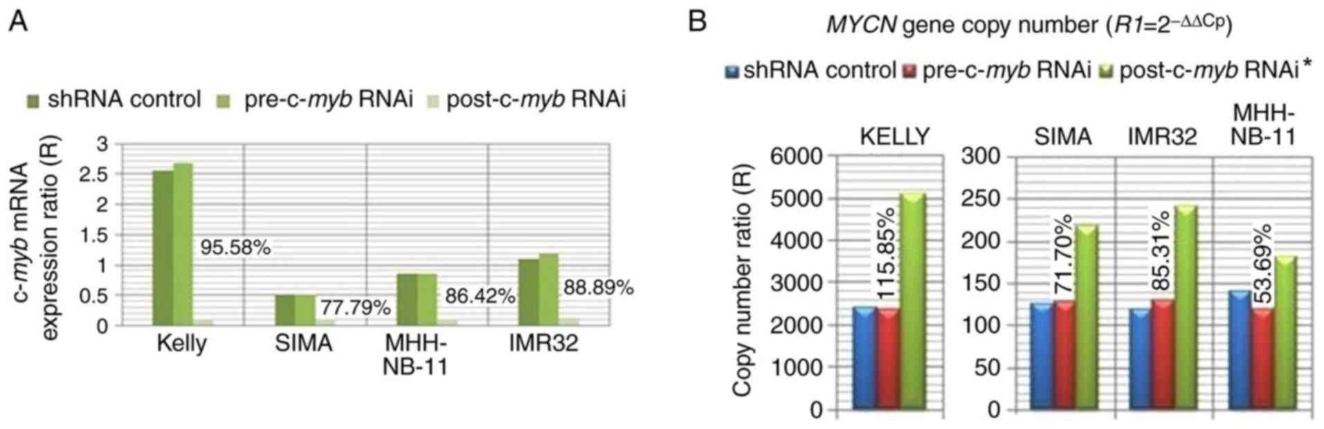The effect of c-myb RNAi treatment on MYCN gene copy number. (A)  Interference rate of c-myb mRNA was presented as compared with shRNA  controls in ...