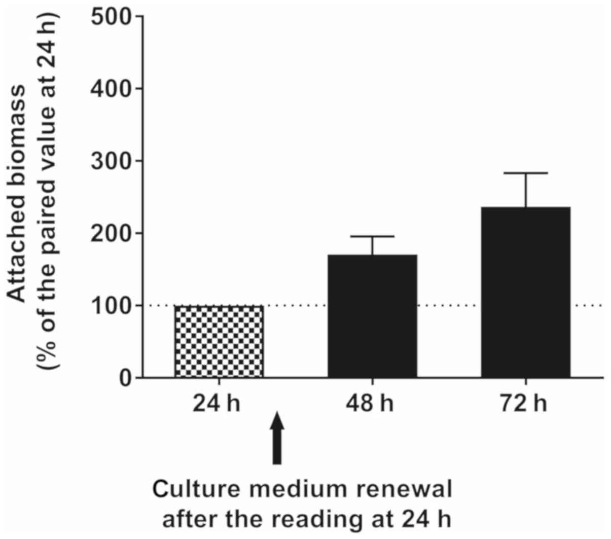 Effects of tyrosol and farnesol on Candida albicans biofilm