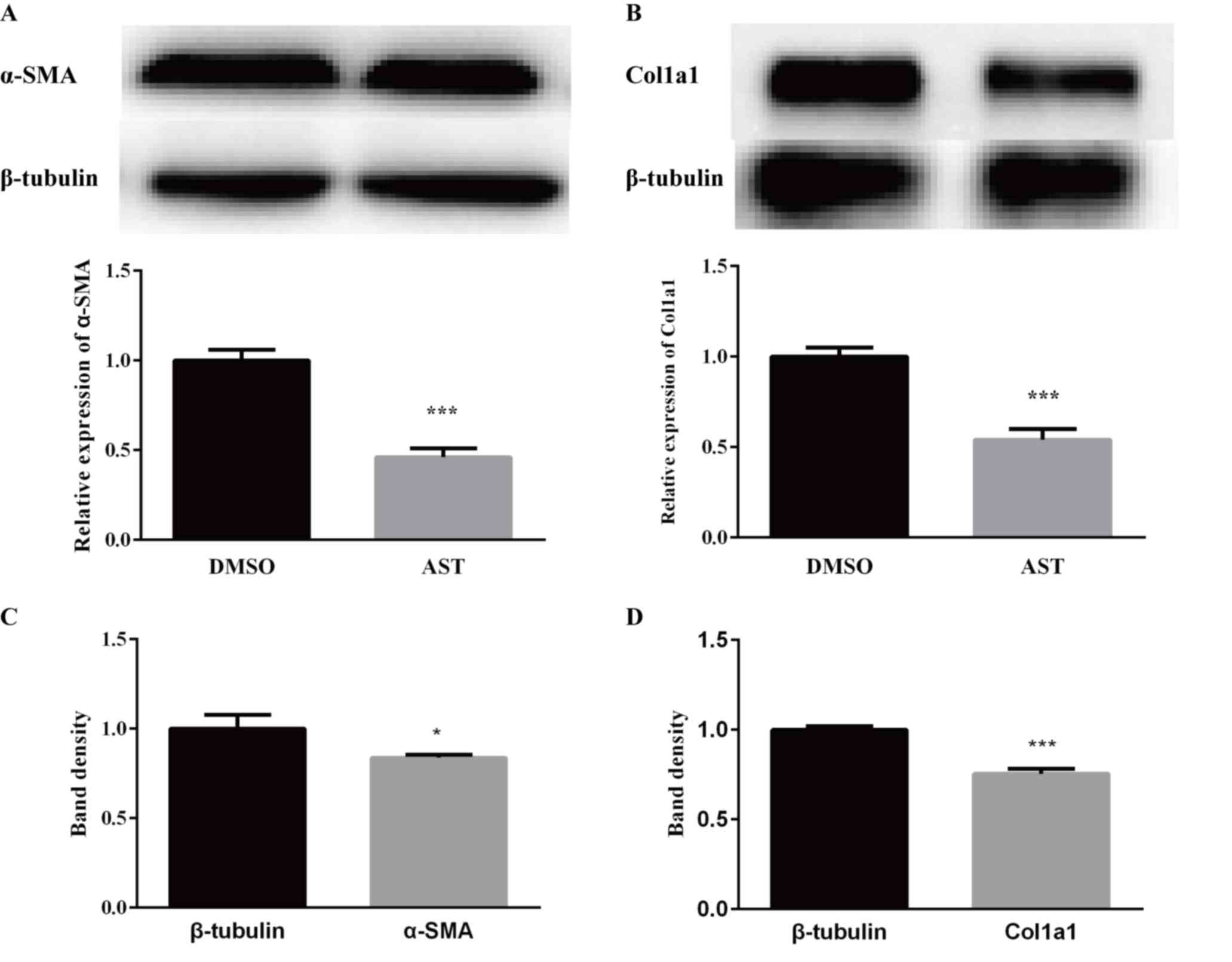 Astaxanthin inhibits proliferation and induces apoptosis of LX‑2