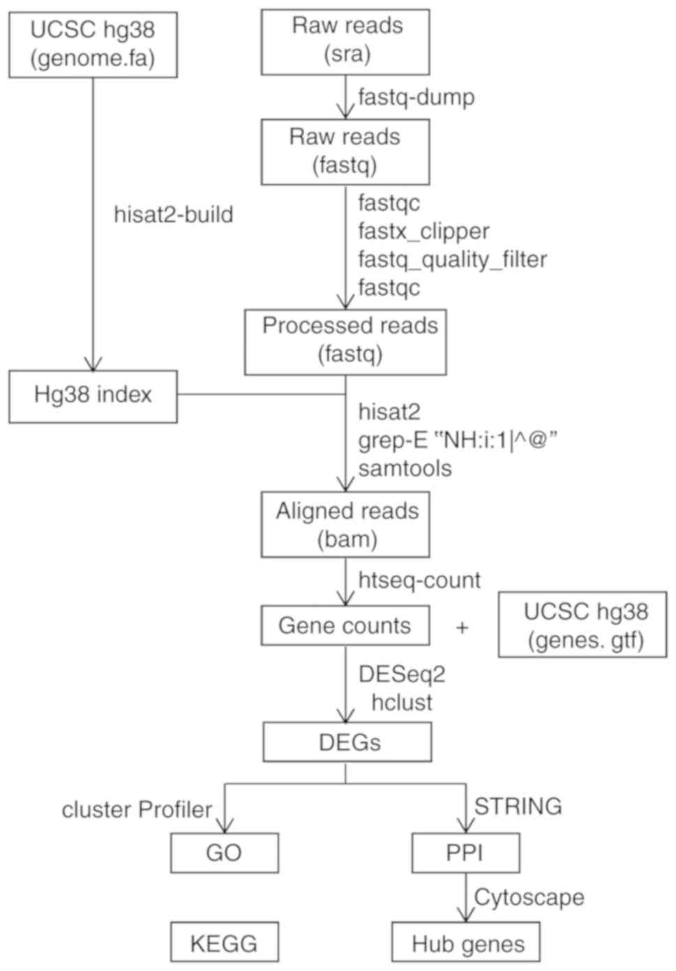 Identification of hub genes in chronically hypoxic