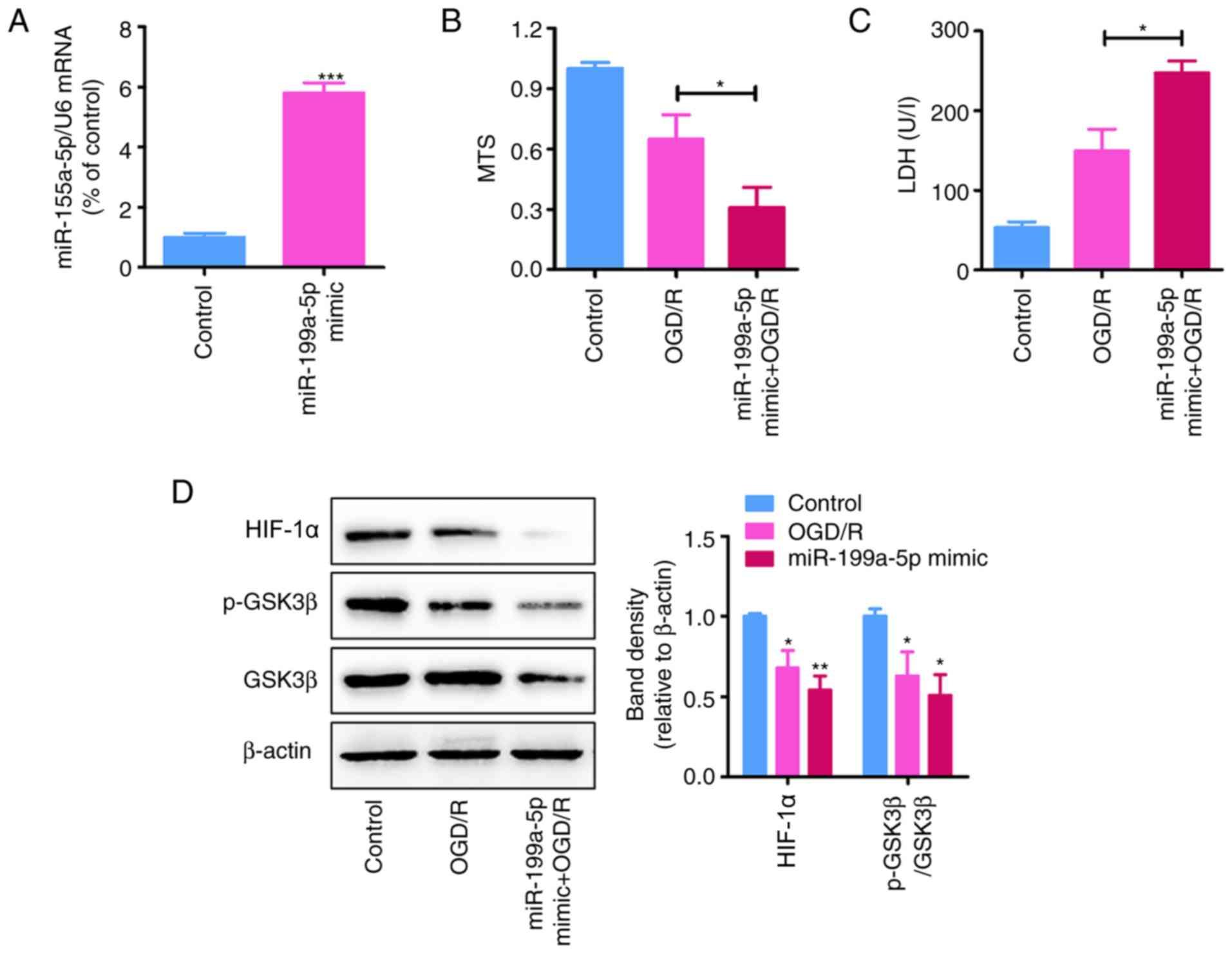 Downregulation of microRNA‑199a‑5p attenuates hypoxia