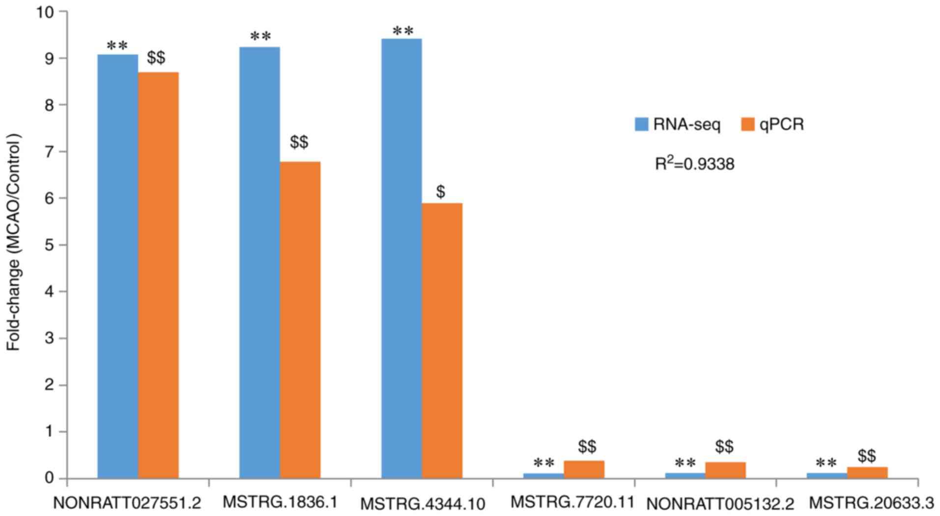Bioinformatics analysis of a long non‑coding RNA and mRNA