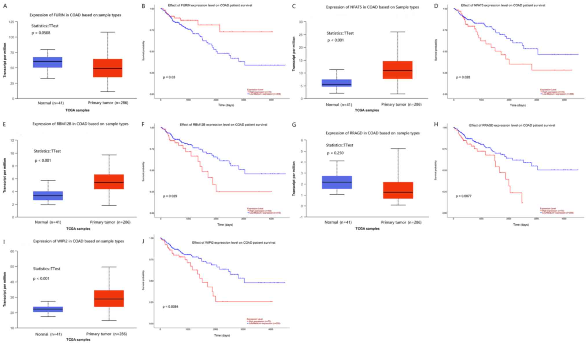 Identification Of Prognostic Biomarkers And Drug Target Prediction For Colon Cancer According To A Competitive Endogenous Rna Network